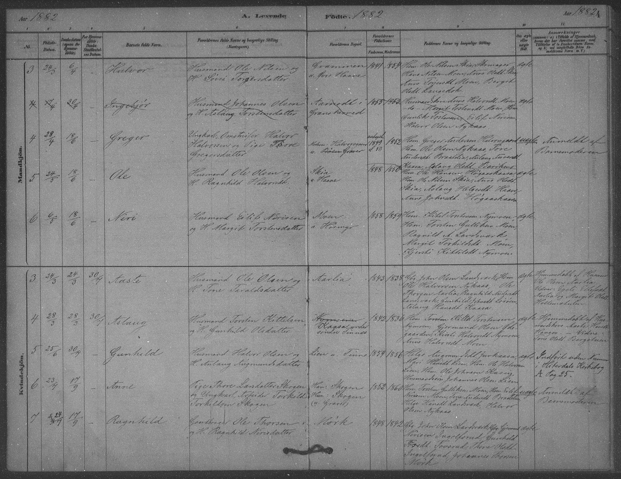 SAKO, Heddal kirkebøker, F/Fb/L0002: Ministerialbok nr. II 2, 1878-1913, s. 4
