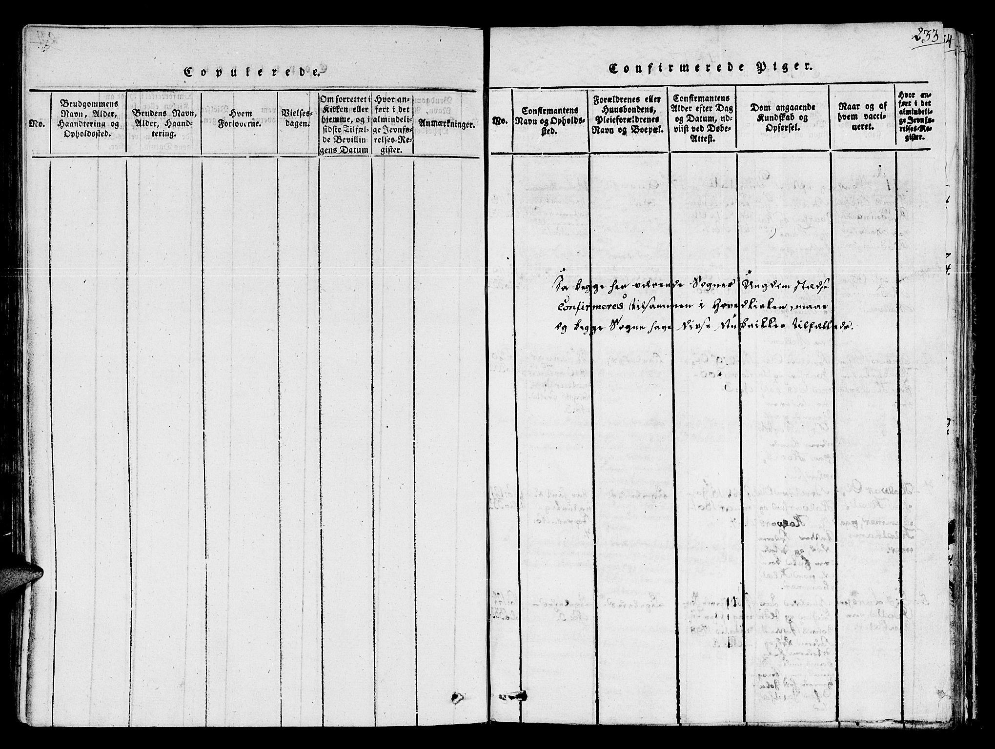 SAT, Ministerialprotokoller, klokkerbøker og fødselsregistre - Sør-Trøndelag, 678/L0895: Ministerialbok nr. 678A05 /1, 1816-1821, s. 233