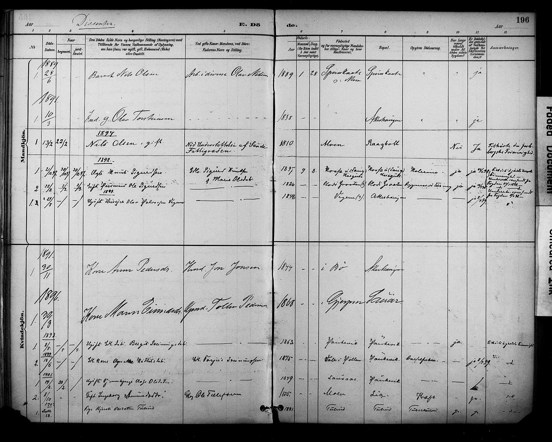 SAKO, Sauherad kirkebøker, F/Fa/L0009: Ministerialbok nr. I 9, 1887-1912, s. 196