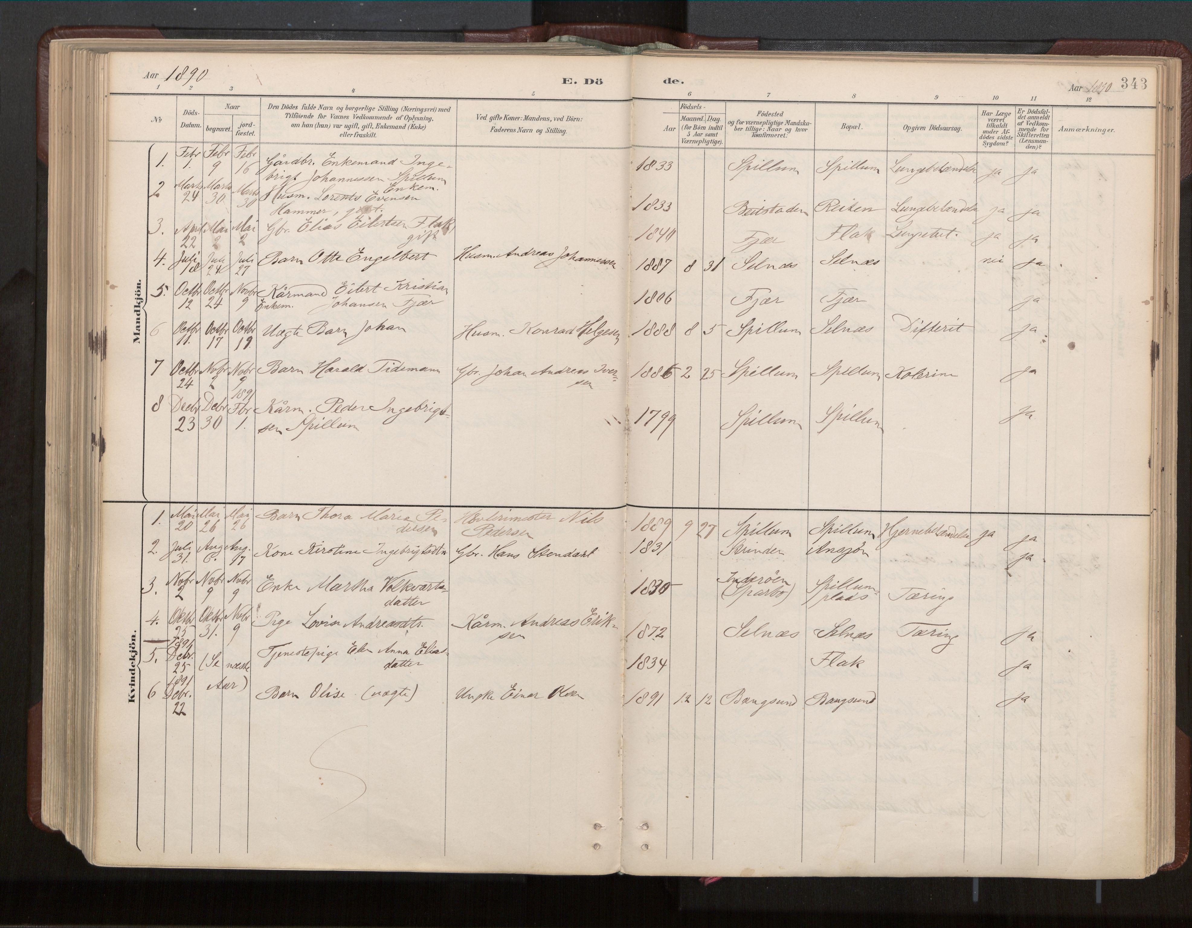 SAT, Ministerialprotokoller, klokkerbøker og fødselsregistre - Nord-Trøndelag, 770/L0589: Ministerialbok nr. 770A03, 1887-1929, s. 343
