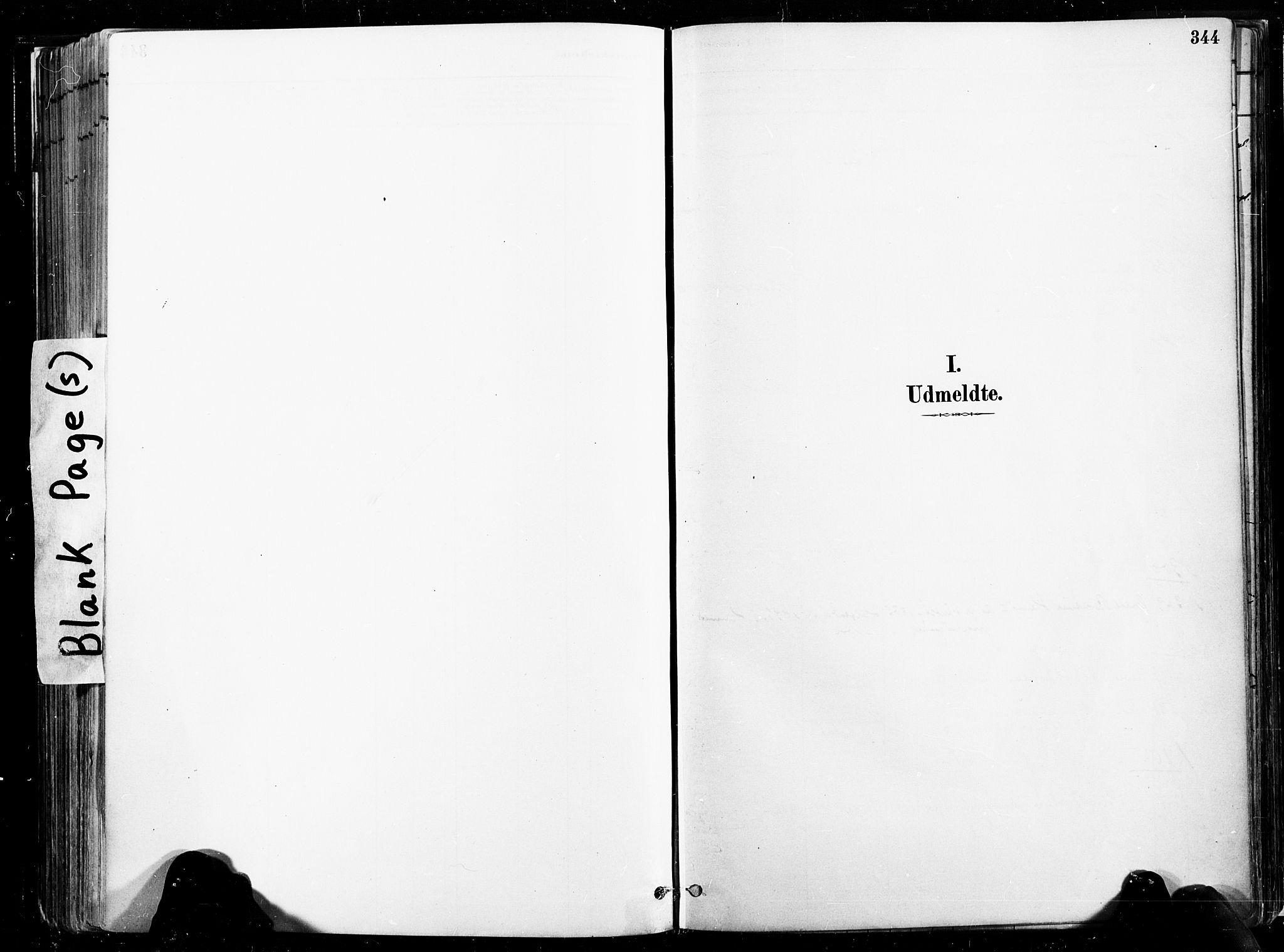 SAT, Ministerialprotokoller, klokkerbøker og fødselsregistre - Nord-Trøndelag, 735/L0351: Ministerialbok nr. 735A10, 1884-1908, s. 344