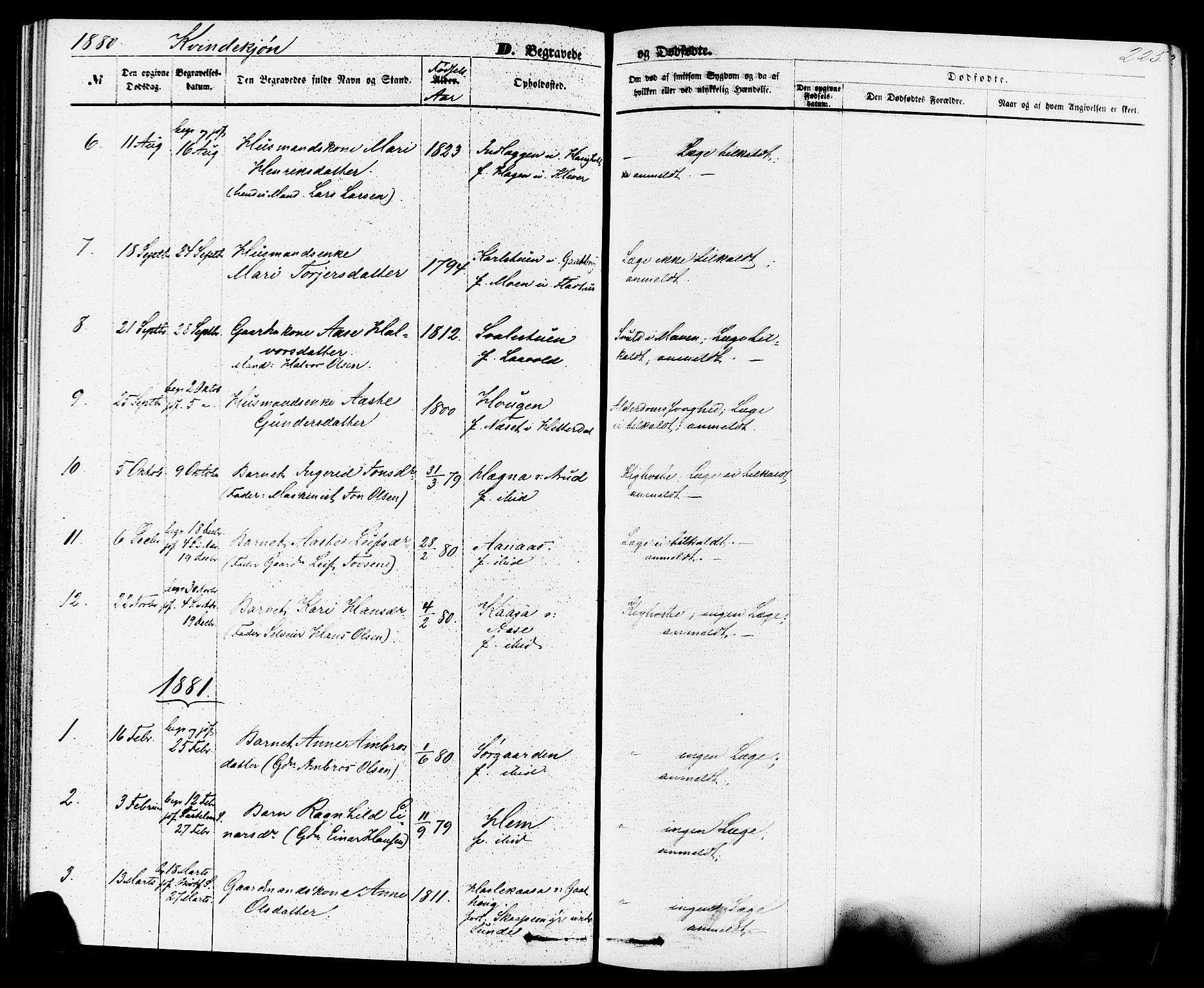 SAKO, Sauherad kirkebøker, F/Fa/L0008: Ministerialbok nr. I 8, 1873-1886, s. 225