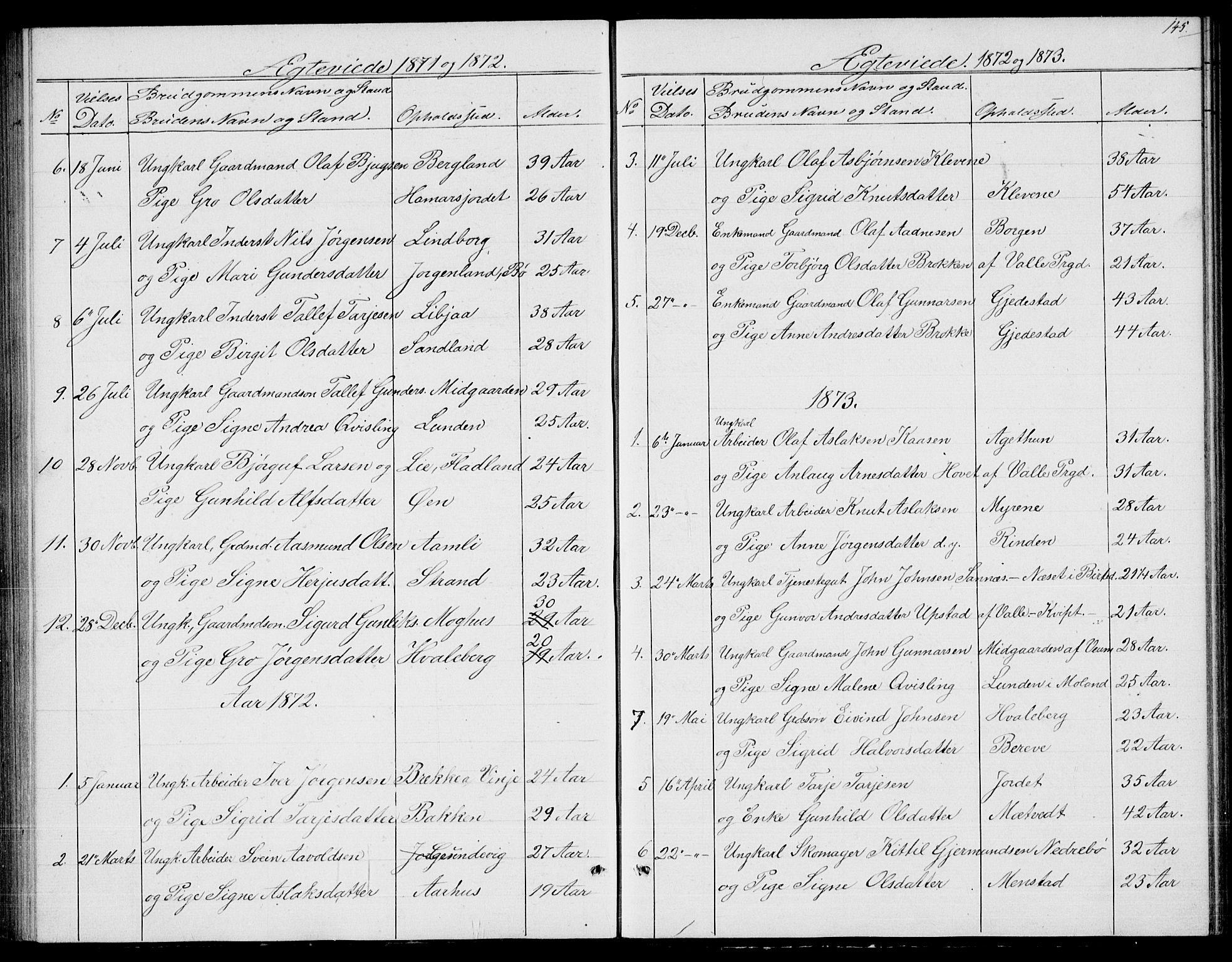SAKO, Fyresdal kirkebøker, G/Ga/L0004: Klokkerbok nr. I 4, 1864-1892, s. 145