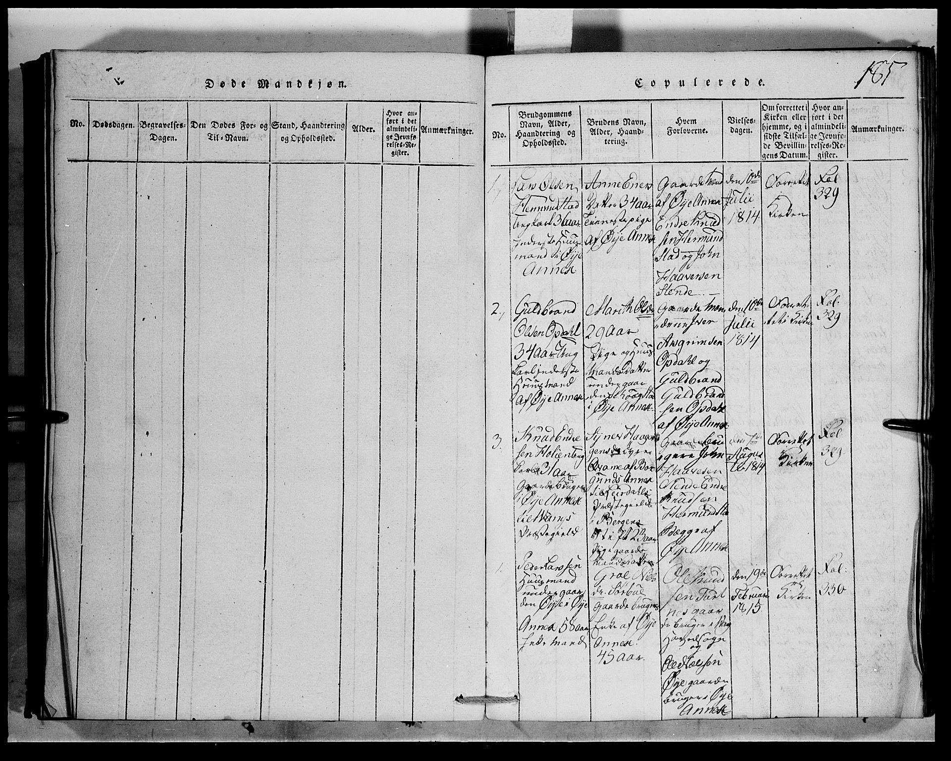 SAH, Vang prestekontor, Valdres, Klokkerbok nr. 1, 1814-1820, s. 185