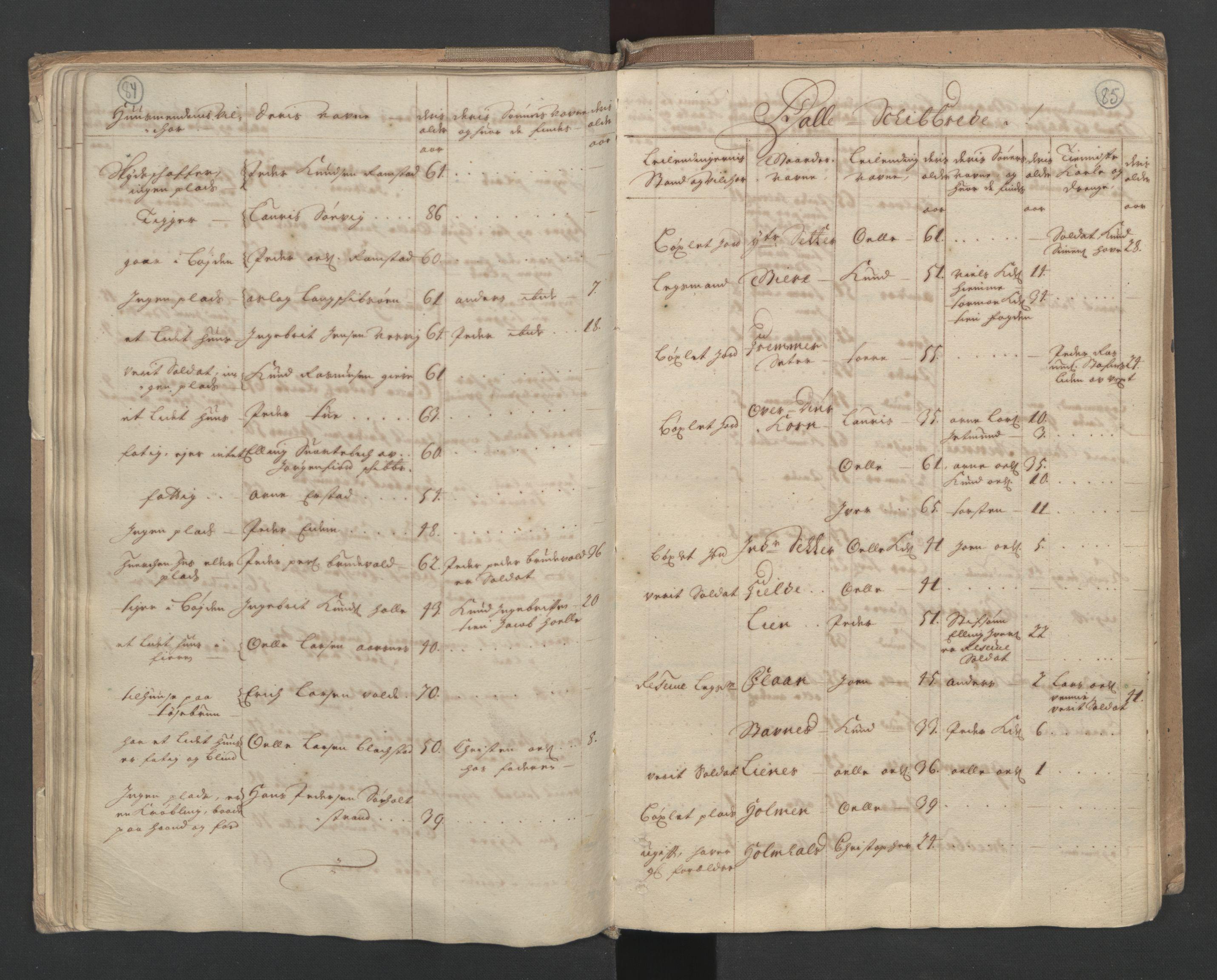 RA, Manntallet 1701, nr. 10: Sunnmøre fogderi, 1701, s. 84-85