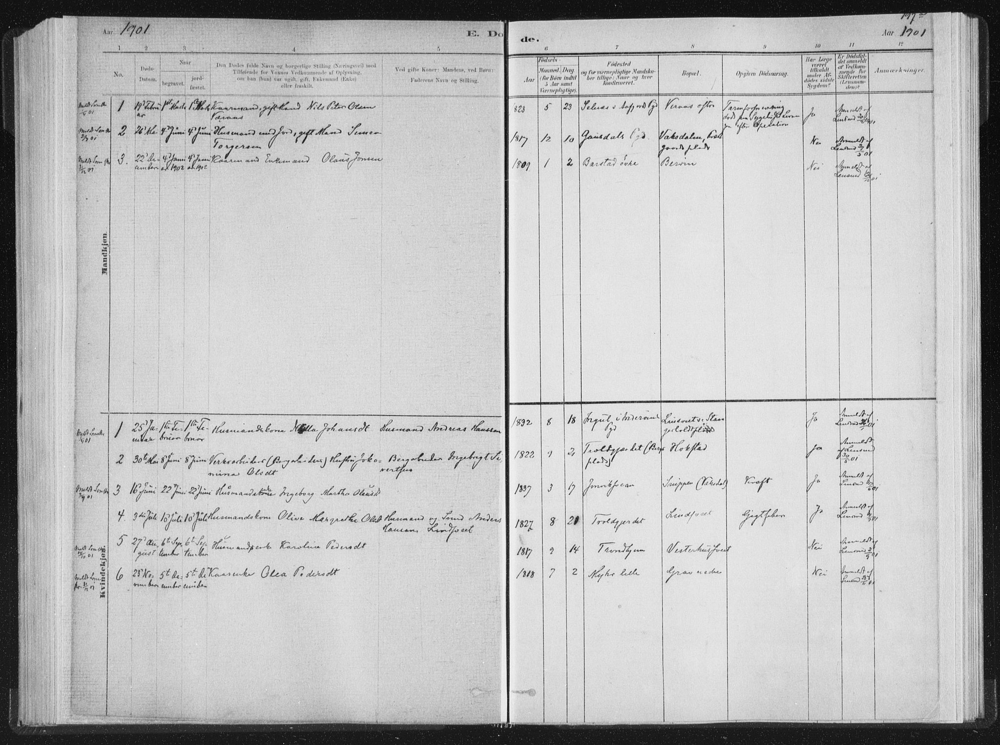 SAT, Ministerialprotokoller, klokkerbøker og fødselsregistre - Nord-Trøndelag, 722/L0220: Ministerialbok nr. 722A07, 1881-1908, s. 197a