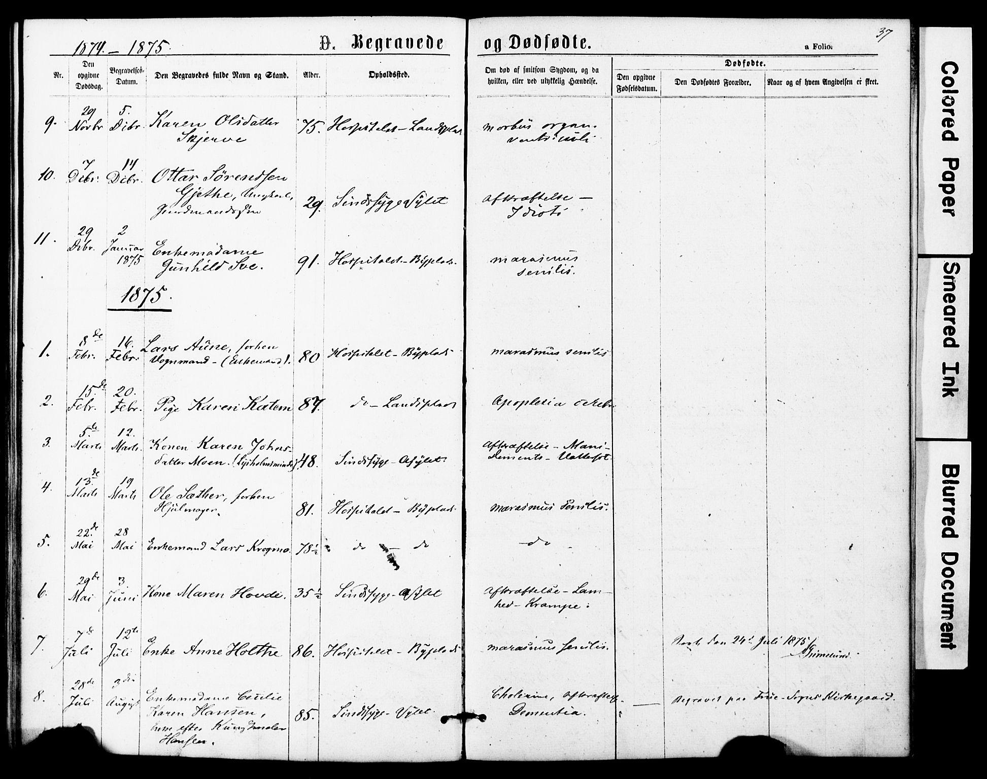 SAT, Ministerialprotokoller, klokkerbøker og fødselsregistre - Sør-Trøndelag, 623/L0469: Ministerialbok nr. 623A03, 1868-1883, s. 37