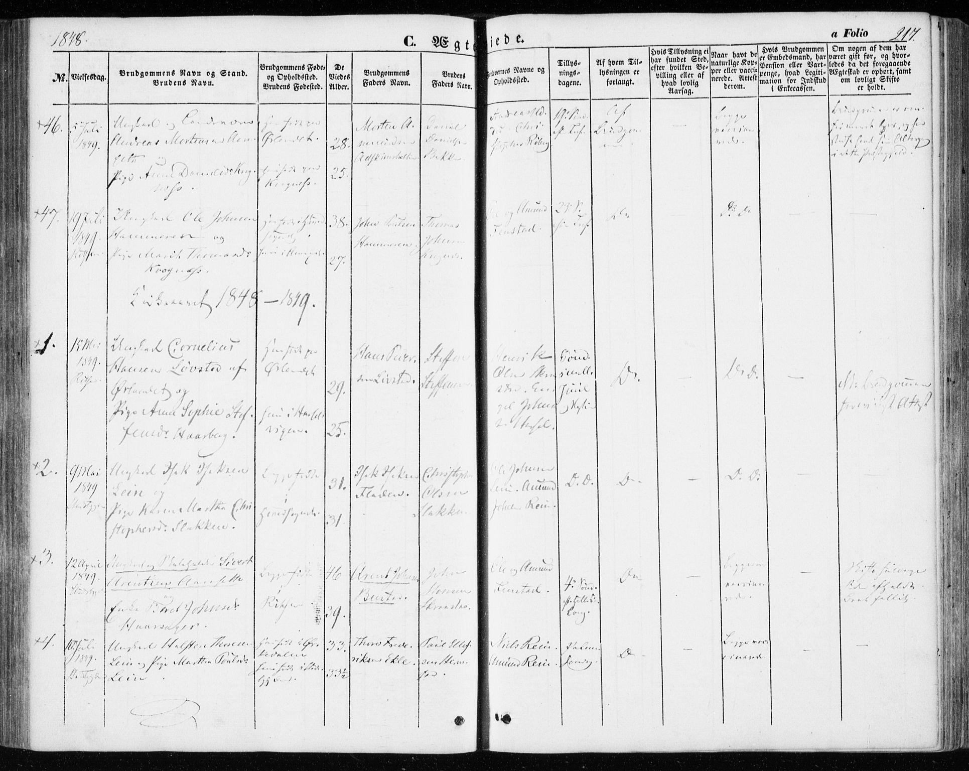 SAT, Ministerialprotokoller, klokkerbøker og fødselsregistre - Sør-Trøndelag, 646/L0611: Ministerialbok nr. 646A09, 1848-1857, s. 217