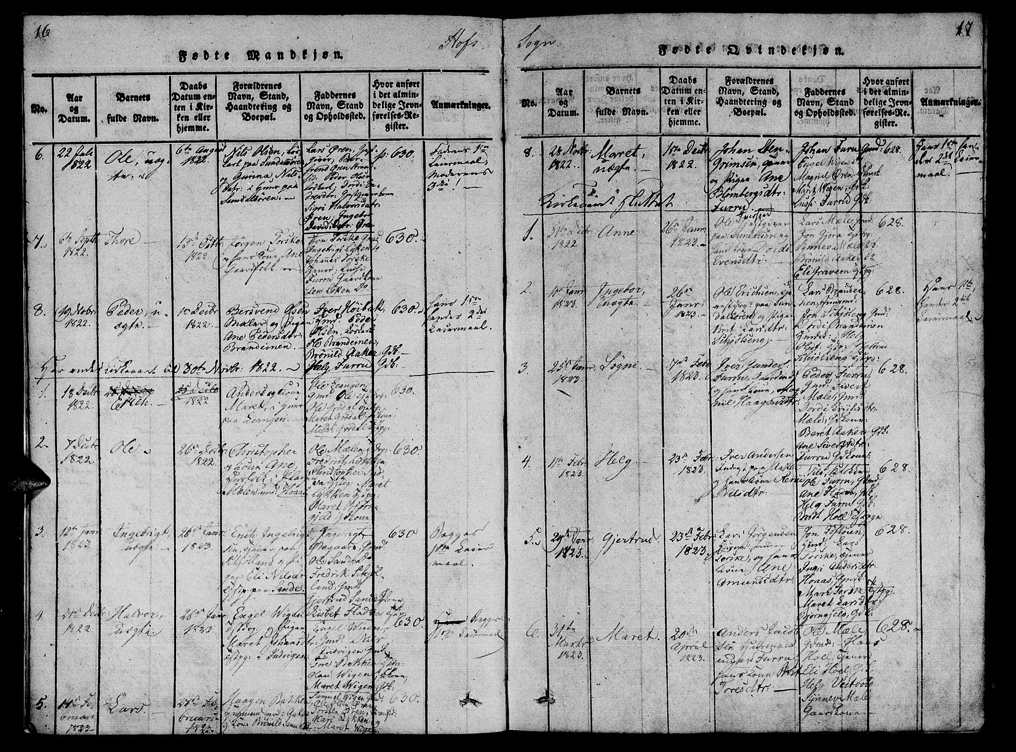 SAT, Ministerialprotokoller, klokkerbøker og fødselsregistre - Møre og Romsdal, 590/L1009: Ministerialbok nr. 590A03 /1, 1819-1832, s. 16-17