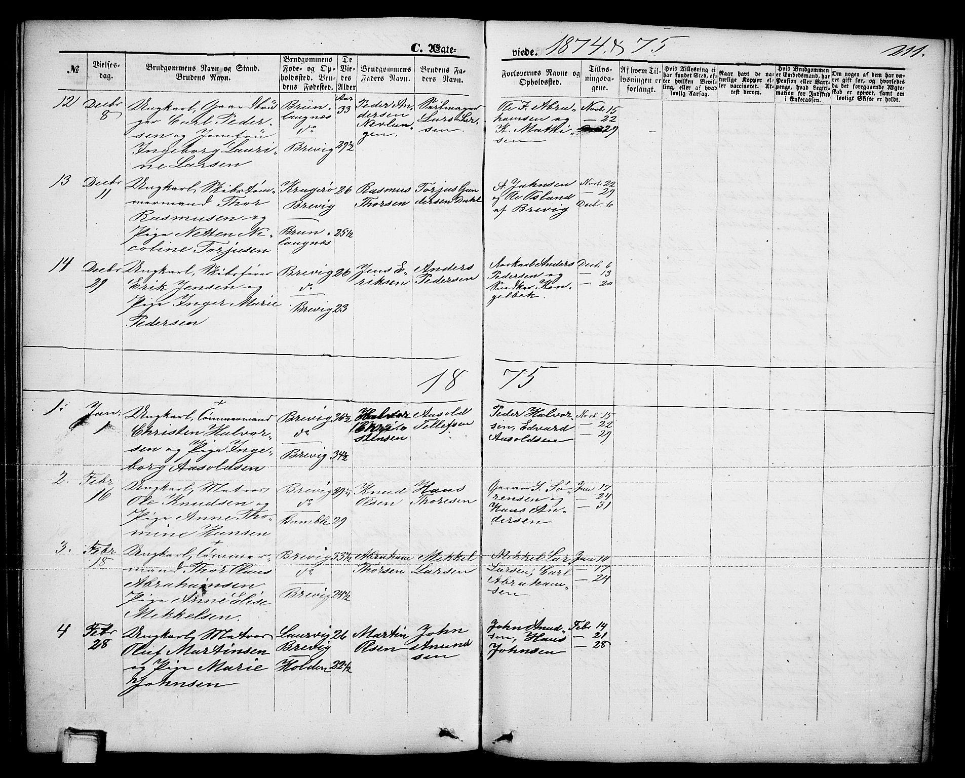 SAKO, Brevik kirkebøker, G/Ga/L0003: Klokkerbok nr. 3, 1866-1881, s. 211