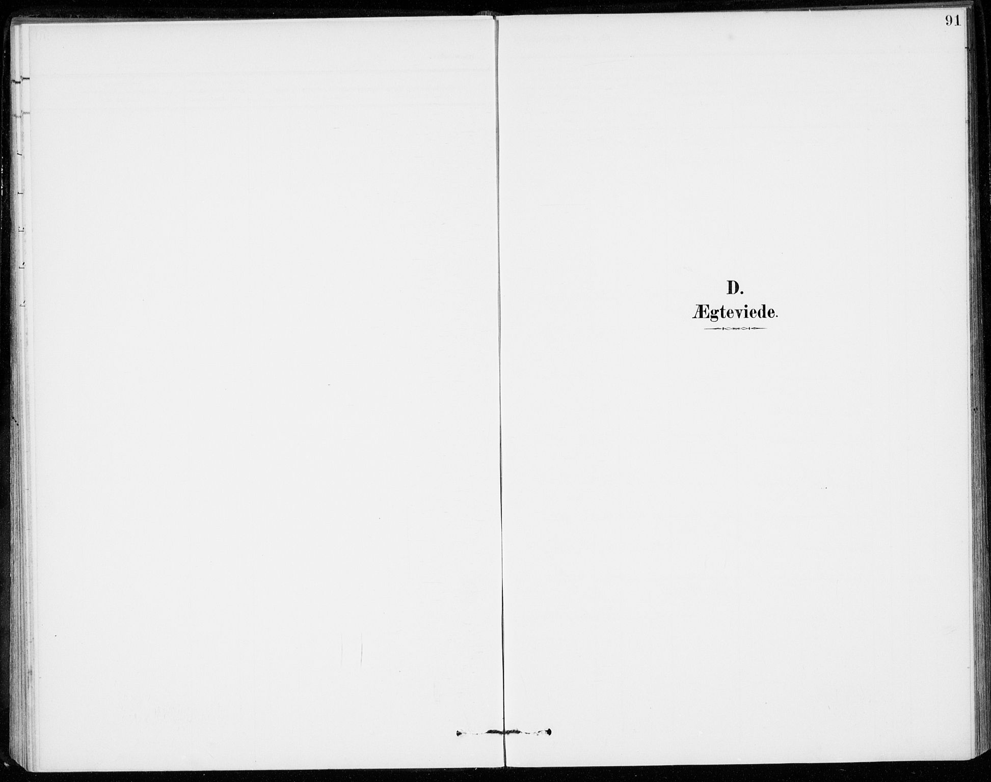 SAKO, Sigdal kirkebøker, F/Fc/L0002: Ministerialbok nr. III 2, 1894-1911, s. 91