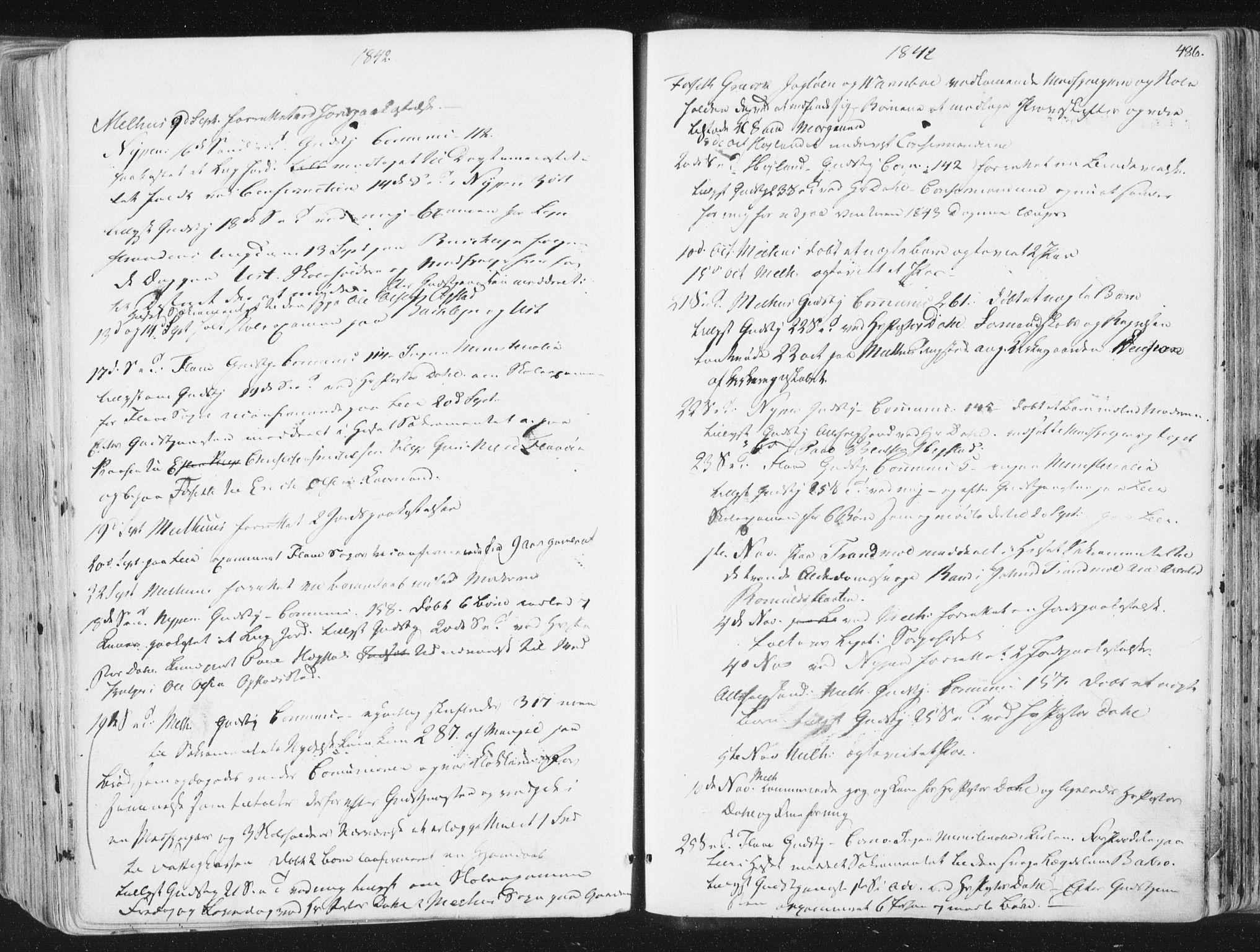 SAT, Ministerialprotokoller, klokkerbøker og fødselsregistre - Sør-Trøndelag, 691/L1074: Ministerialbok nr. 691A06, 1842-1852, s. 486