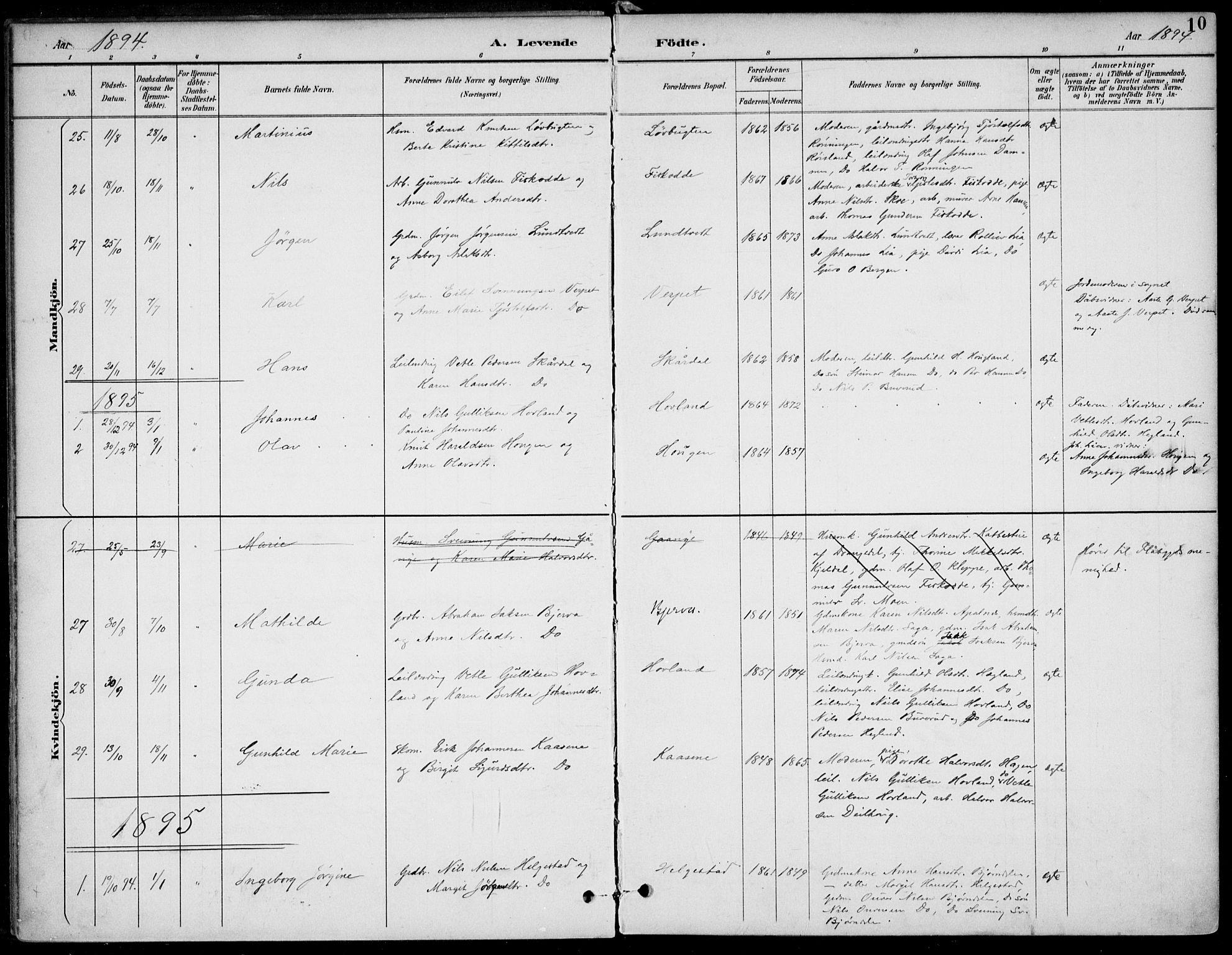 SAKO, Lunde kirkebøker, F/Fa/L0003: Ministerialbok nr. I 3, 1893-1902, s. 10