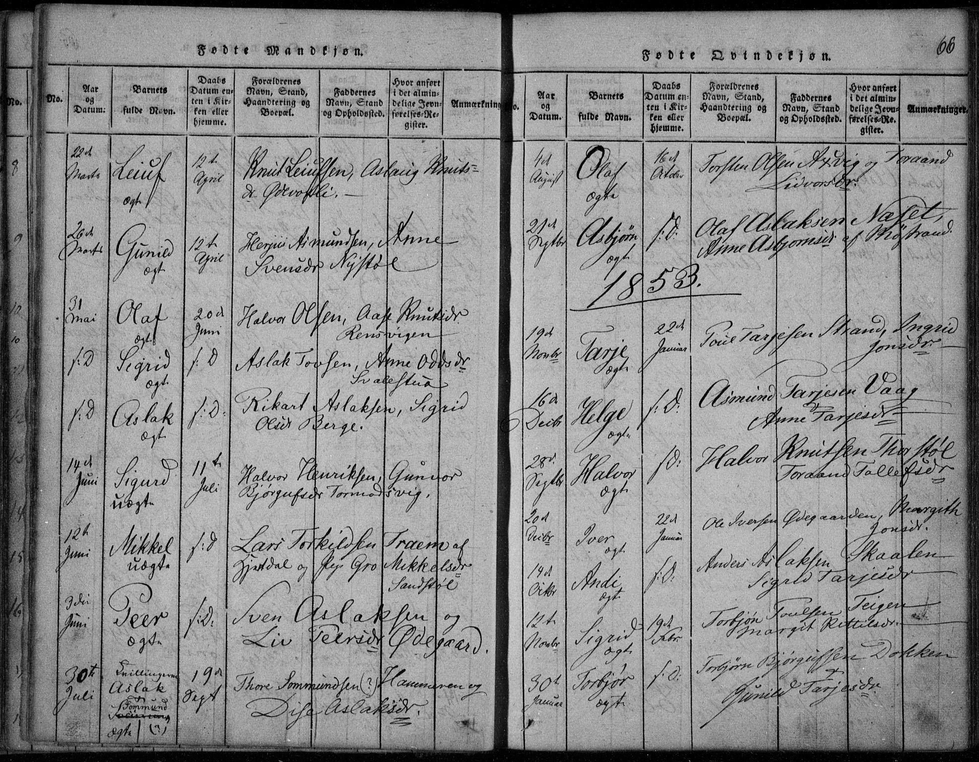 SAKO, Rauland kirkebøker, F/Fa/L0001: Ministerialbok nr. 1, 1814-1859, s. 66