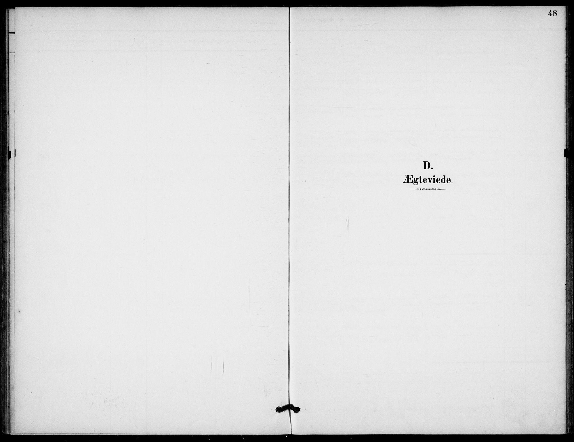 SAKO, Lunde kirkebøker, F/Fb/L0004: Ministerialbok nr. II 4, 1892-1907, s. 48