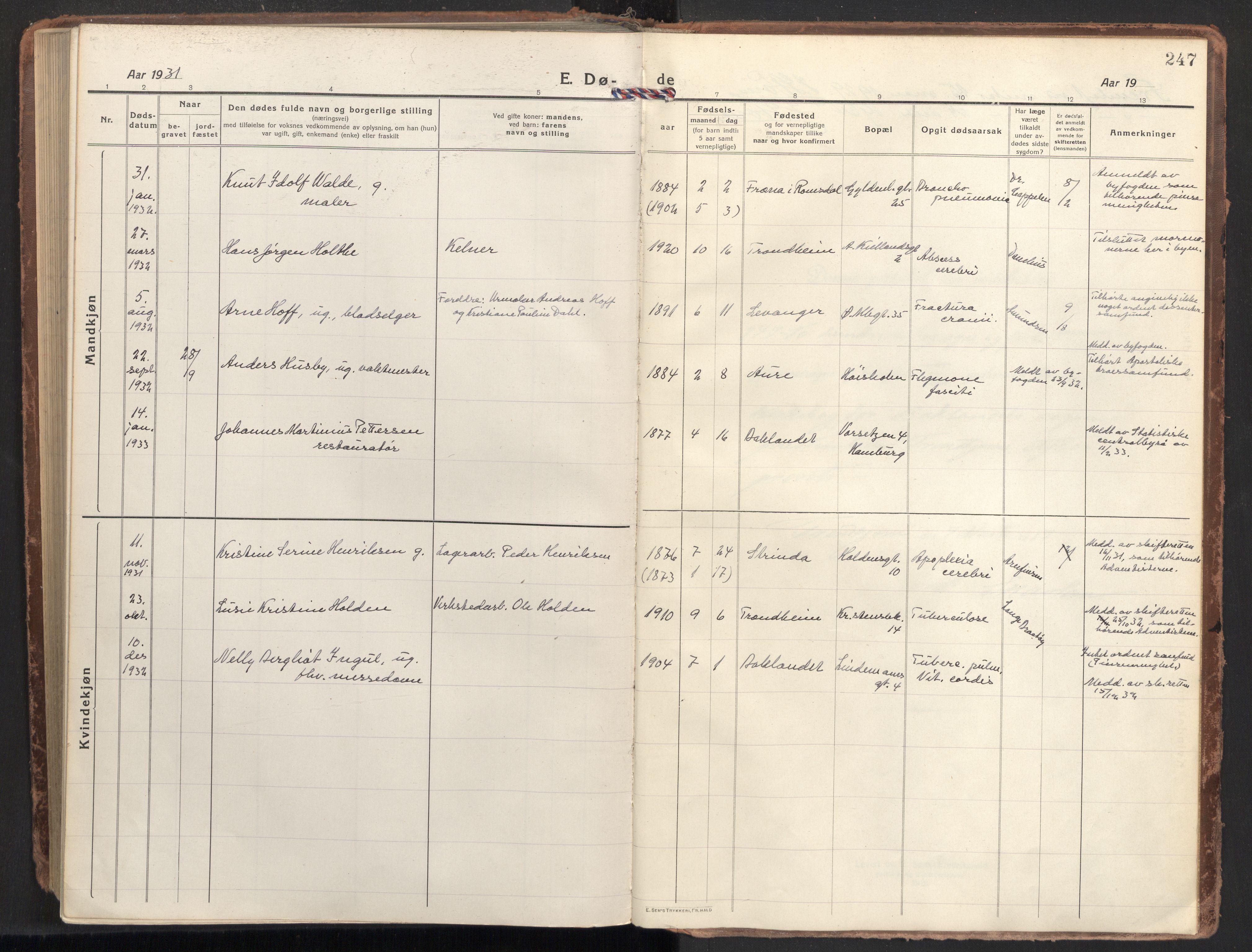 SAT, Ministerialprotokoller, klokkerbøker og fødselsregistre - Sør-Trøndelag, 604/L0207: Ministerialbok nr. 604A27, 1917-1933, s. 247
