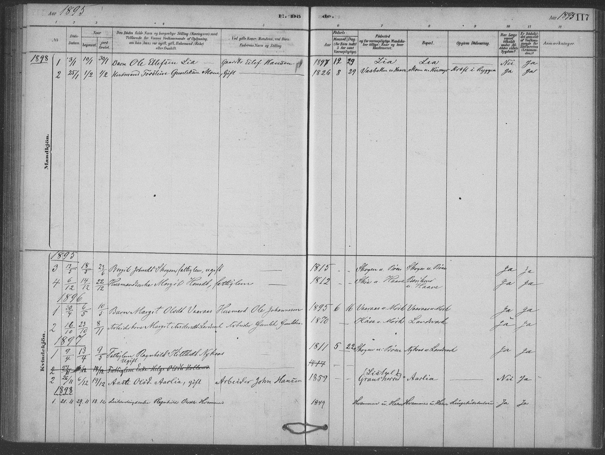 SAKO, Heddal kirkebøker, F/Fb/L0002: Ministerialbok nr. II 2, 1878-1913, s. 117