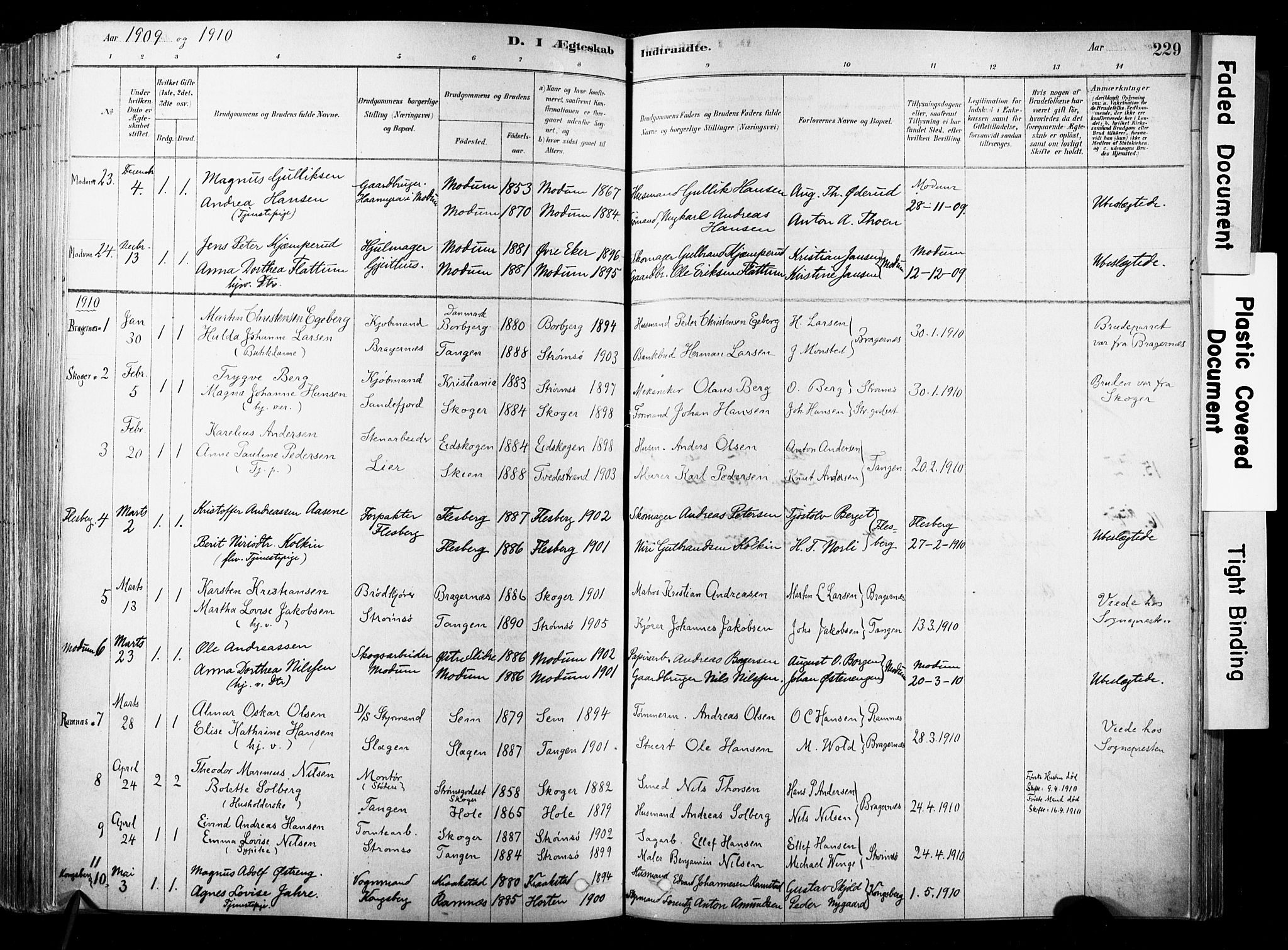 SAKO, Strømsø kirkebøker, F/Fb/L0006: Ministerialbok nr. II 6, 1879-1910, s. 229