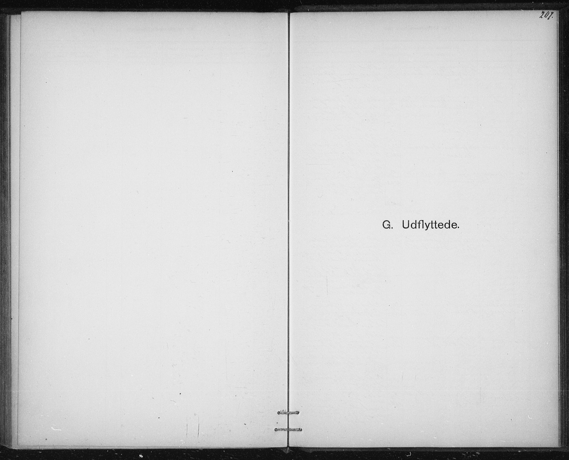 SAT, Ministerialprotokoller, klokkerbøker og fødselsregistre - Sør-Trøndelag, 613/L0392: Ministerialbok nr. 613A01, 1887-1906, s. 207