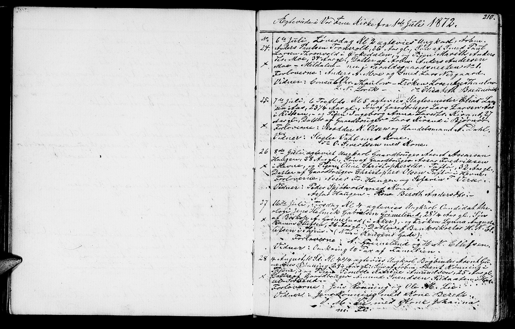 SAT, Ministerialprotokoller, klokkerbøker og fødselsregistre - Sør-Trøndelag, 602/L0142: Klokkerbok nr. 602C10, 1872-1894, s. 210