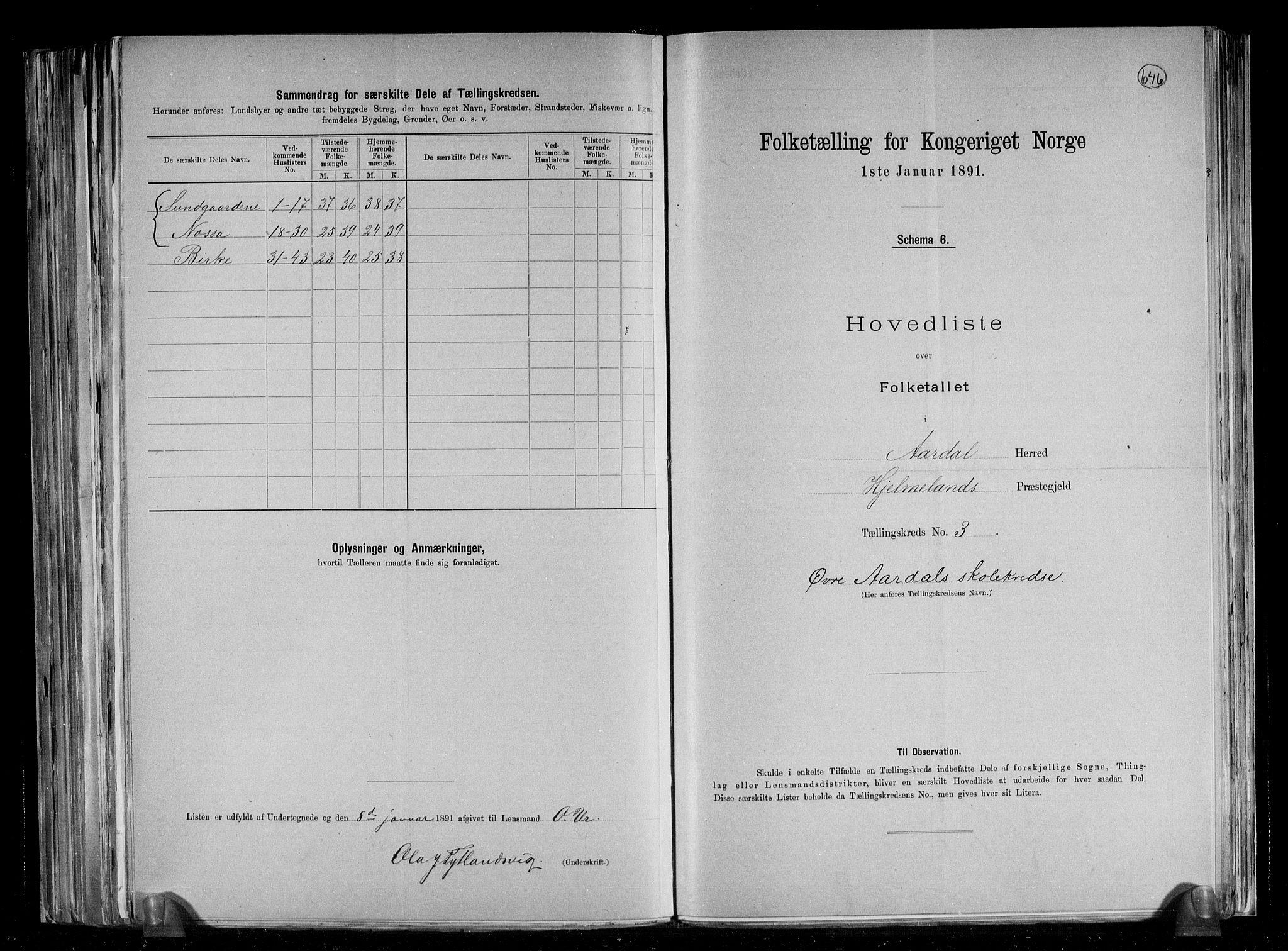 RA, Folketelling 1891 for 1131 Årdal herred, 1891, s. 8