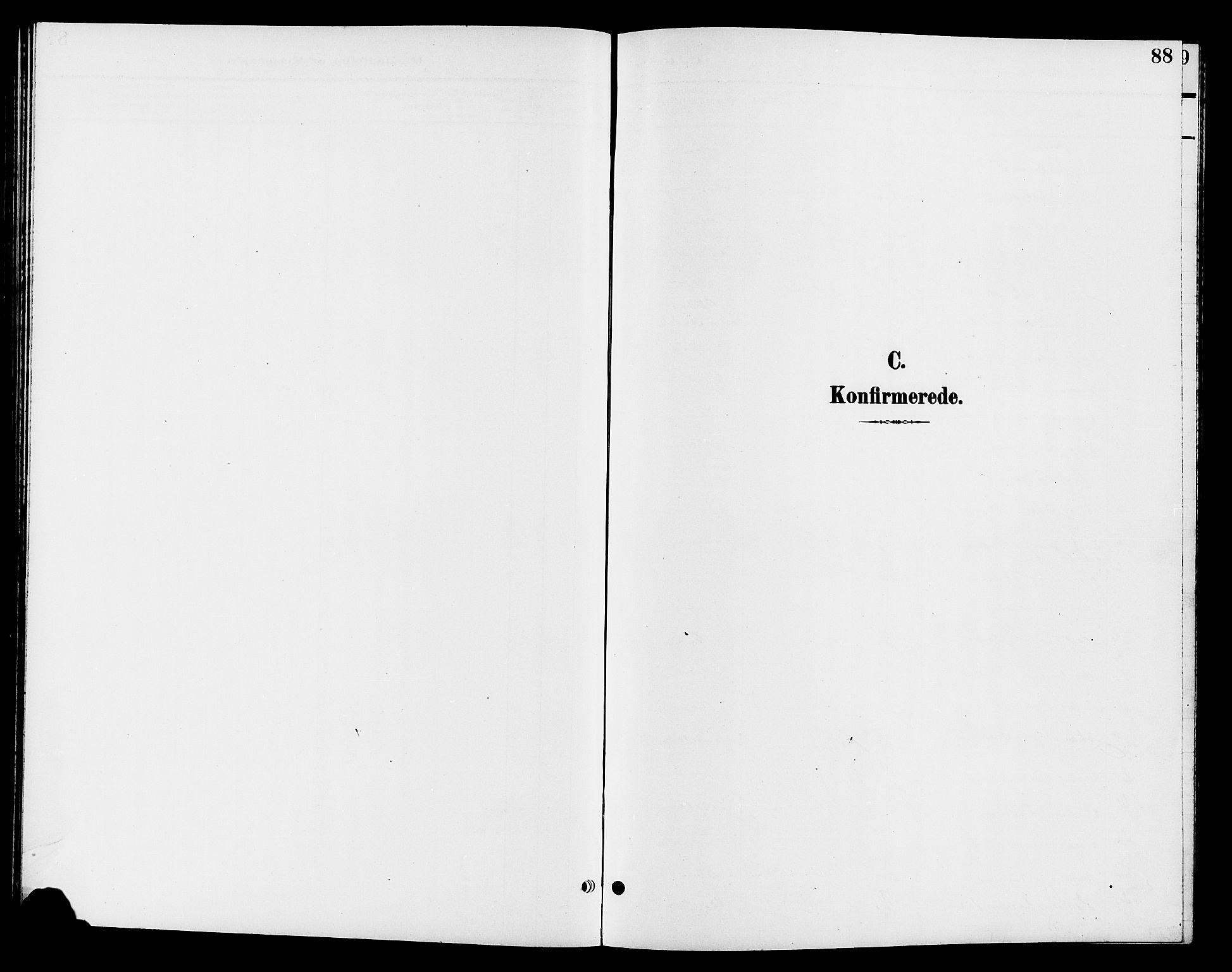 SAH, Jevnaker prestekontor, Klokkerbok nr. 3, 1896-1909, s. 88