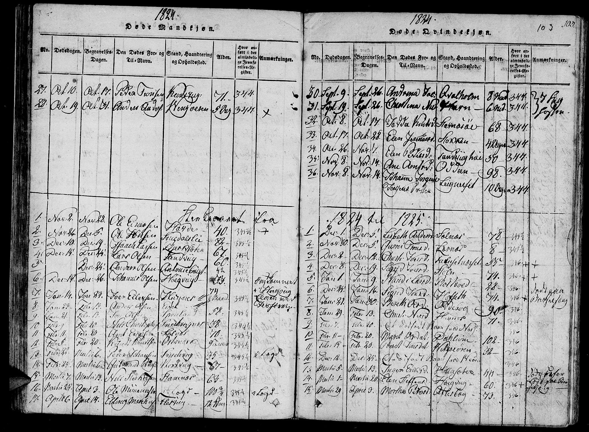SAT, Ministerialprotokoller, klokkerbøker og fødselsregistre - Sør-Trøndelag, 630/L0491: Ministerialbok nr. 630A04, 1818-1830, s. 103