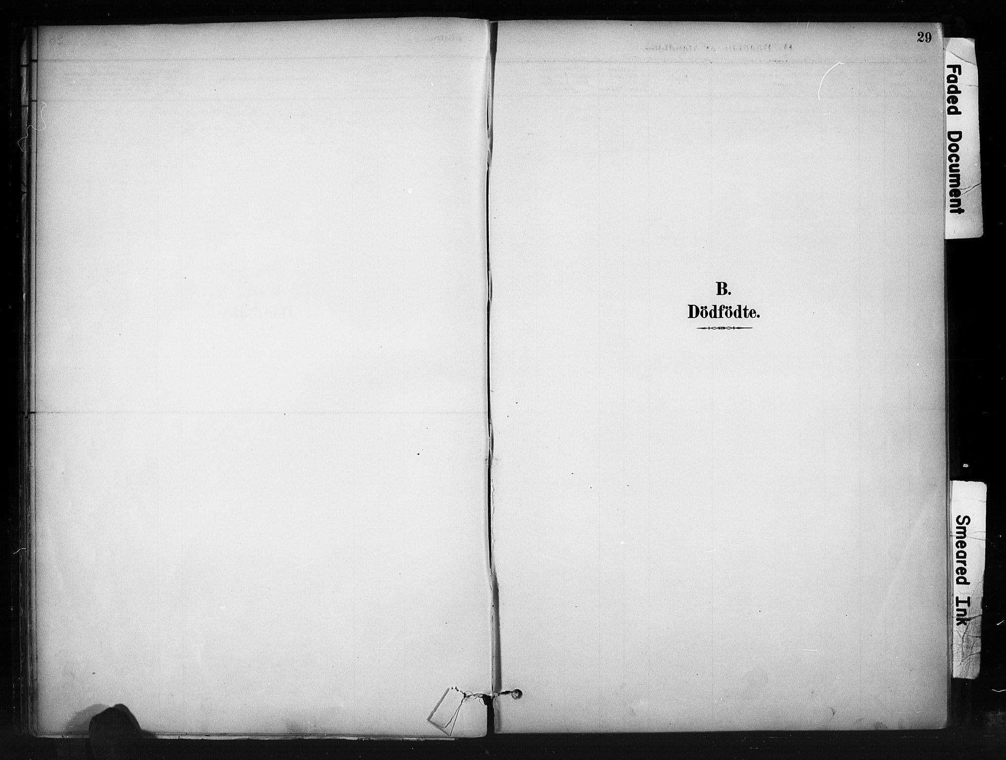 SAH, Nord-Aurdal prestekontor, Ministerialbok nr. 10, 1883-1896, s. 29