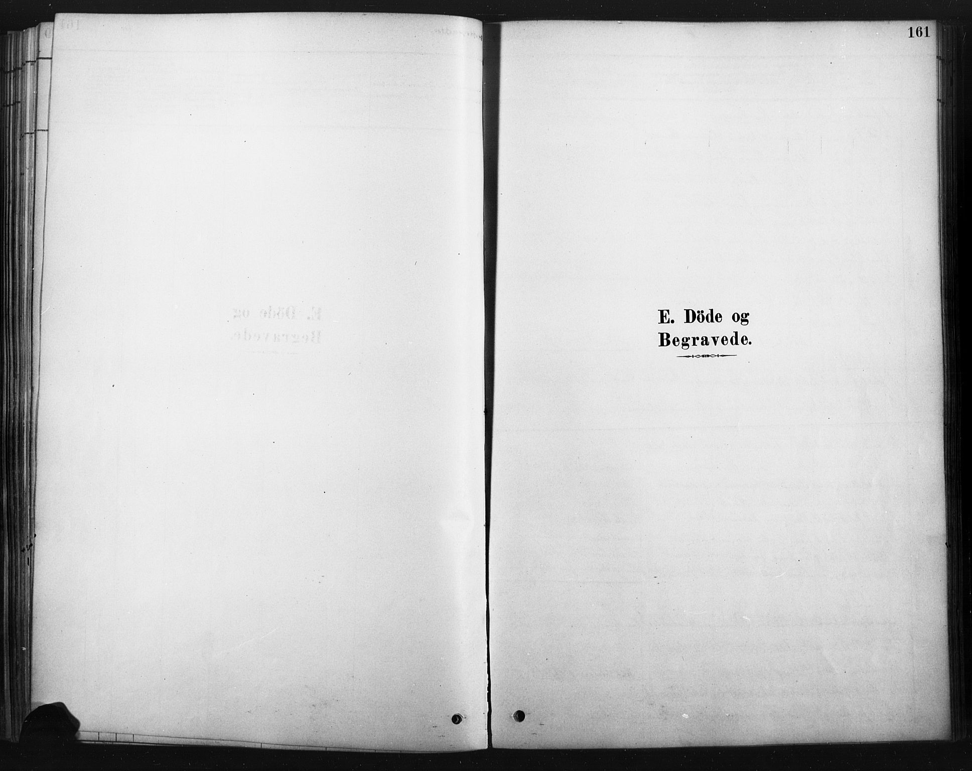 SAH, Rendalen prestekontor, H/Ha/Haa/L0010: Ministerialbok nr. 10, 1878-1901, s. 161
