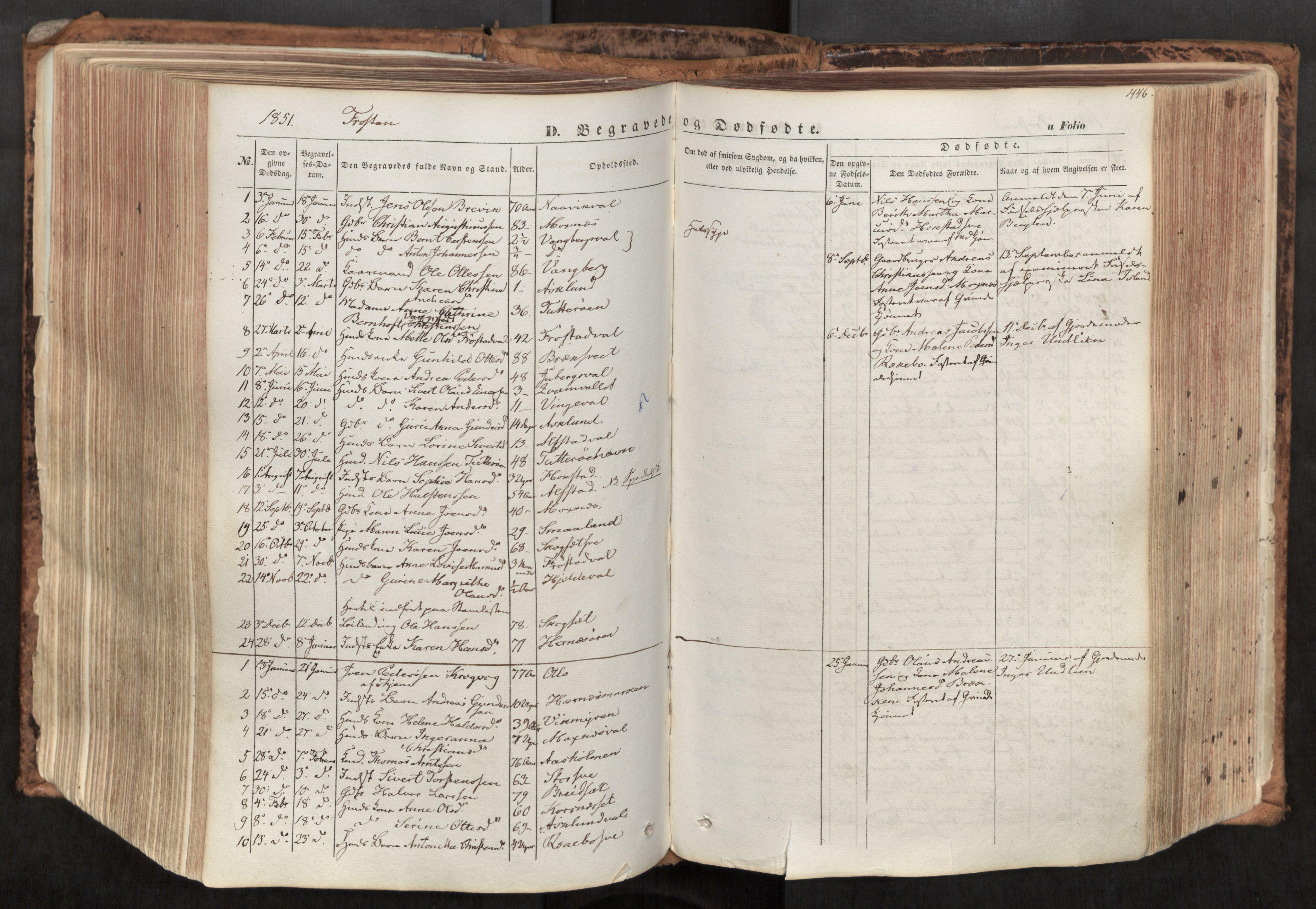 SAT, Ministerialprotokoller, klokkerbøker og fødselsregistre - Nord-Trøndelag, 713/L0116: Ministerialbok nr. 713A07, 1850-1877, s. 446