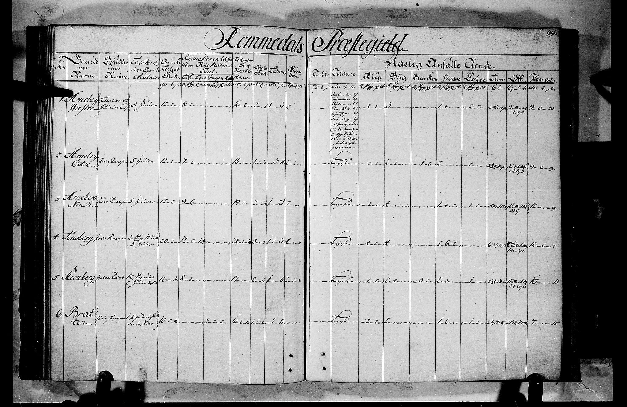 RA, Rentekammeret inntil 1814, Realistisk ordnet avdeling, Fb/L0008b: Ullerål allmenning, 1723, s. 98b-99a