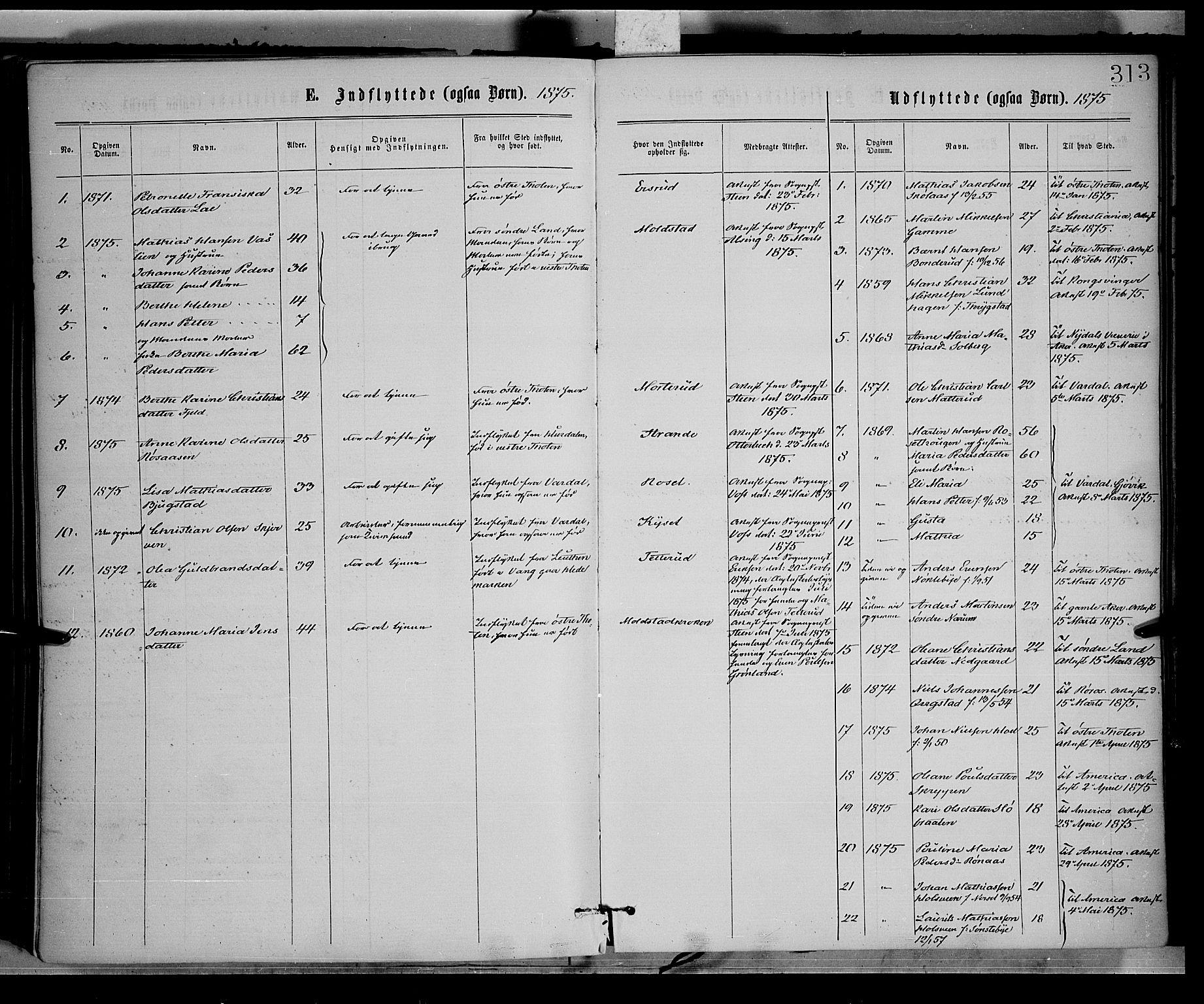 SAH, Vestre Toten prestekontor, H/Ha/Haa/L0008: Ministerialbok nr. 8, 1870-1877, s. 313