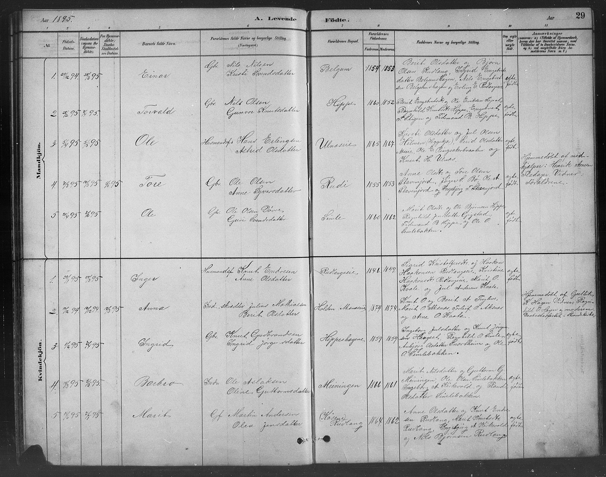 SAH, Nord-Aurdal prestekontor, Klokkerbok nr. 8, 1883-1916, s. 29