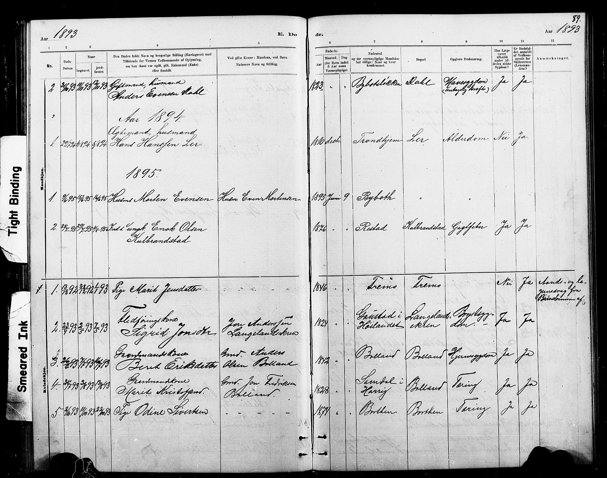 SAT, Ministerialprotokoller, klokkerbøker og fødselsregistre - Sør-Trøndelag, 693/L1123: Klokkerbok nr. 693C04, 1887-1910, s. 89