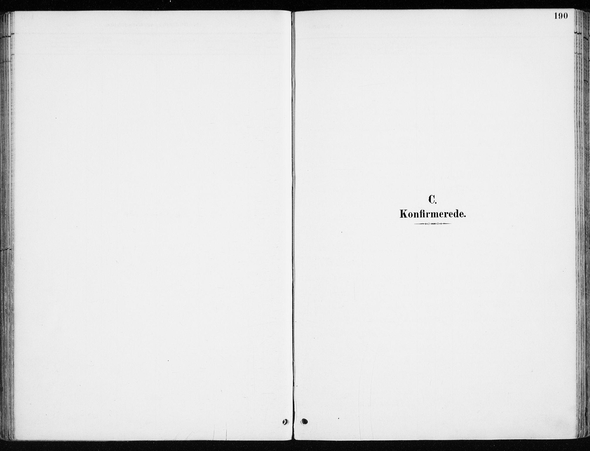 SAH, Løten prestekontor, K/Ka/L0010: Ministerialbok nr. 10, 1892-1907, s. 190