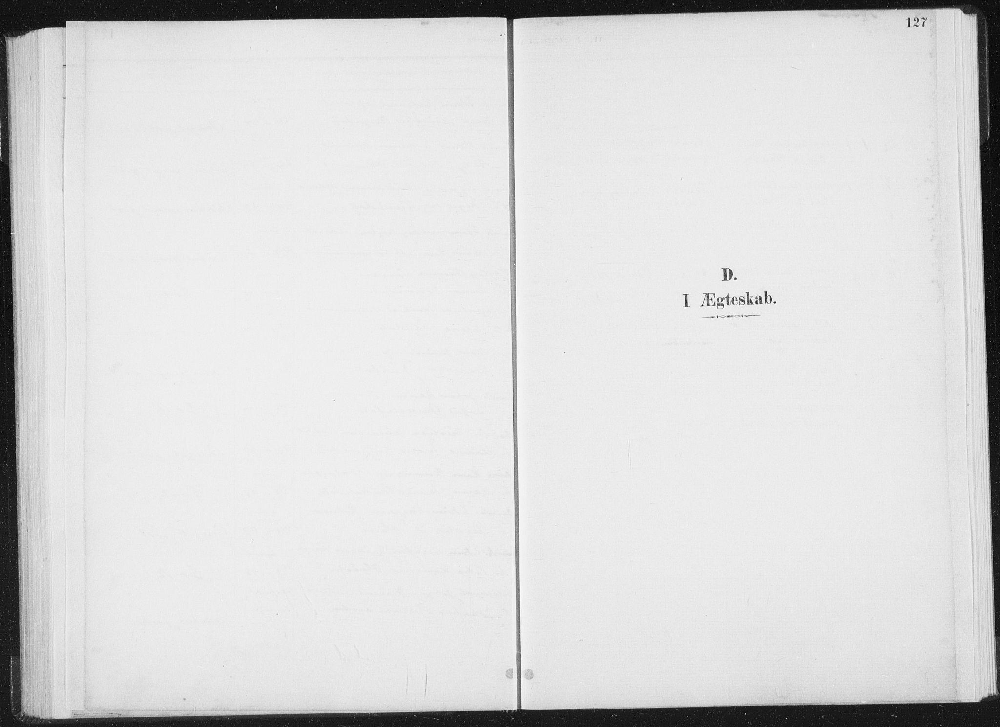 SAT, Ministerialprotokoller, klokkerbøker og fødselsregistre - Nord-Trøndelag, 771/L0597: Ministerialbok nr. 771A04, 1885-1910, s. 127