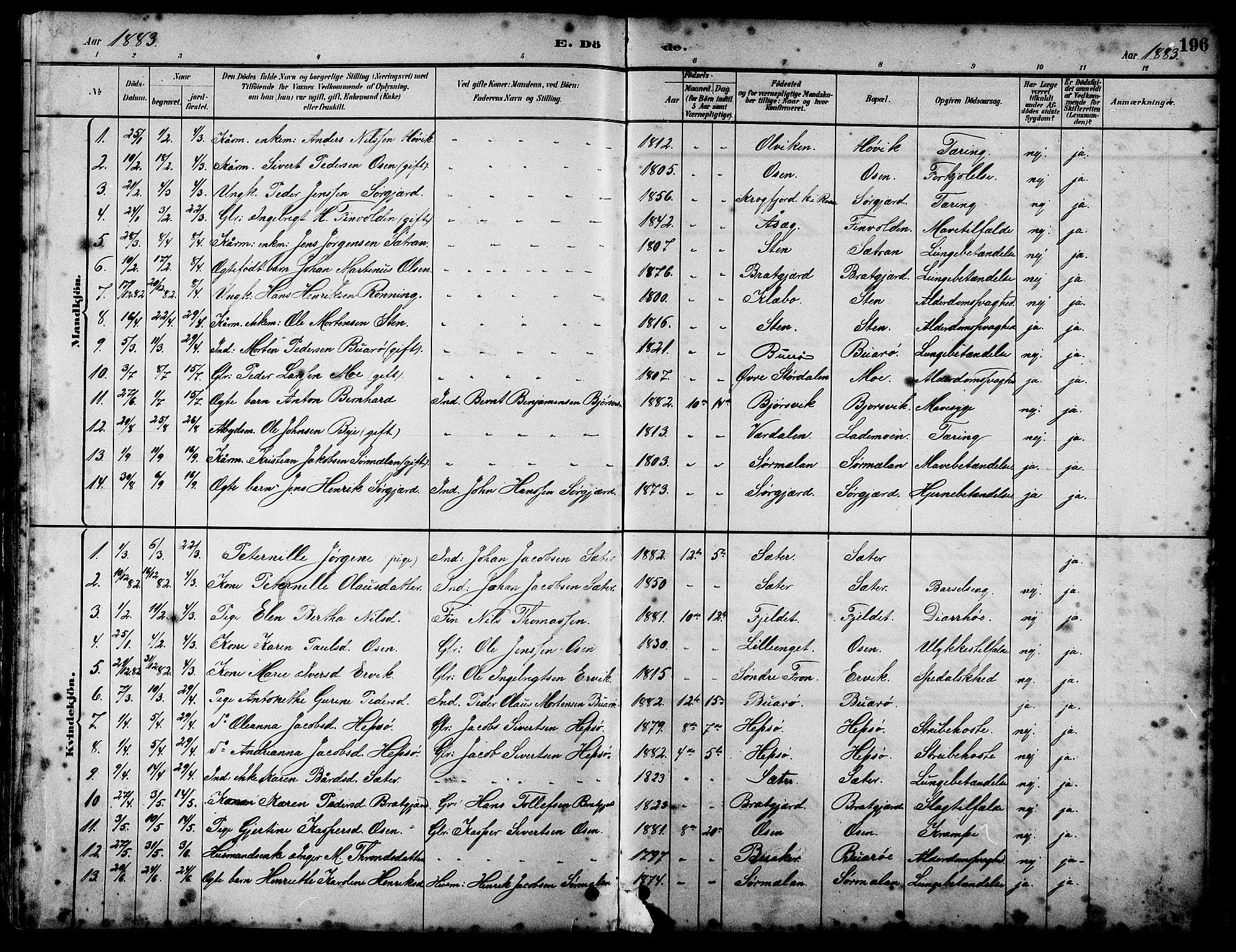 SAT, Ministerialprotokoller, klokkerbøker og fødselsregistre - Sør-Trøndelag, 658/L0726: Klokkerbok nr. 658C02, 1883-1908, s. 196