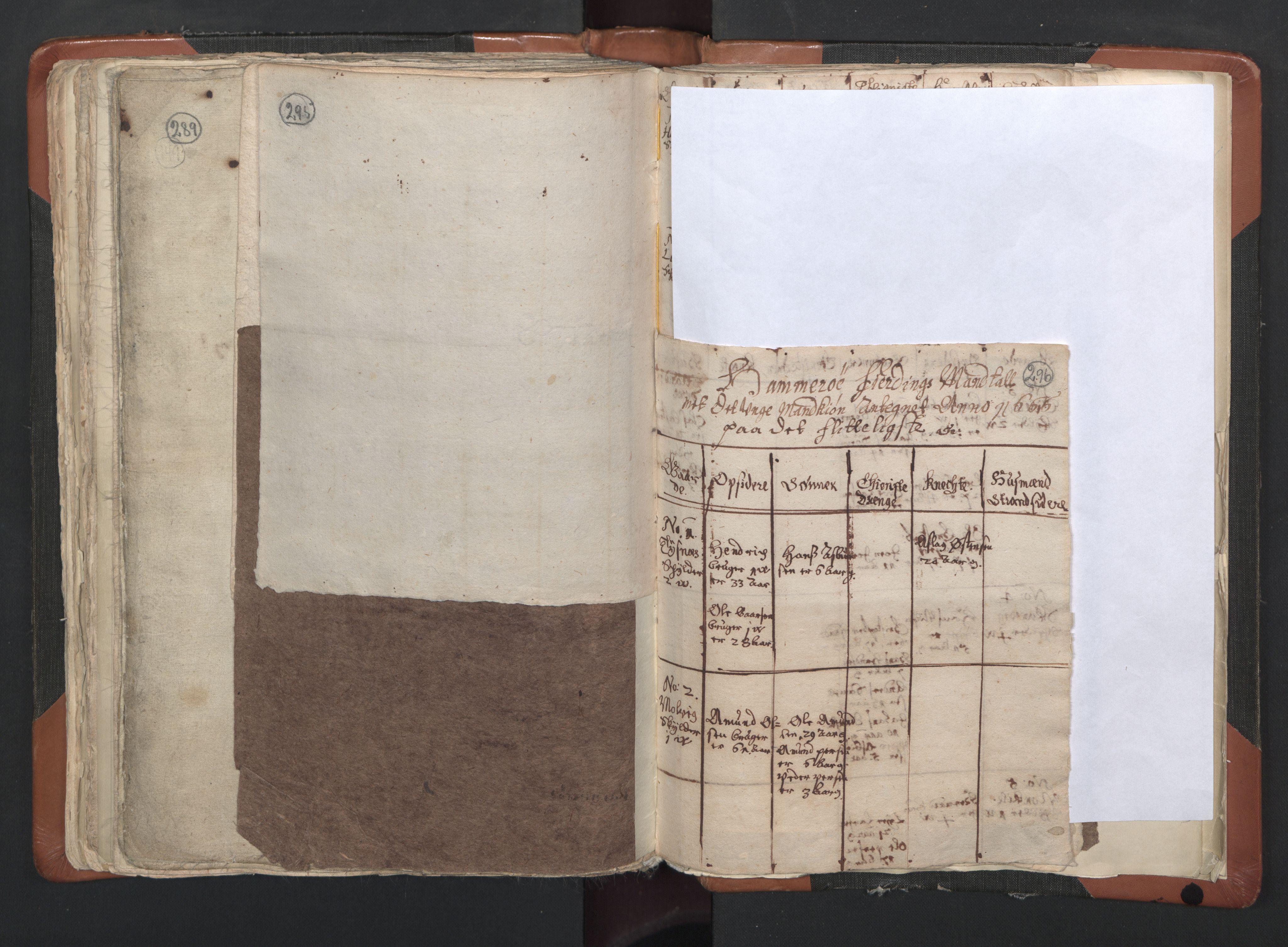 RA, Sogneprestenes manntall 1664-1666, nr. 35: Helgeland prosti og Salten prosti, 1664-1666, s. 295-296