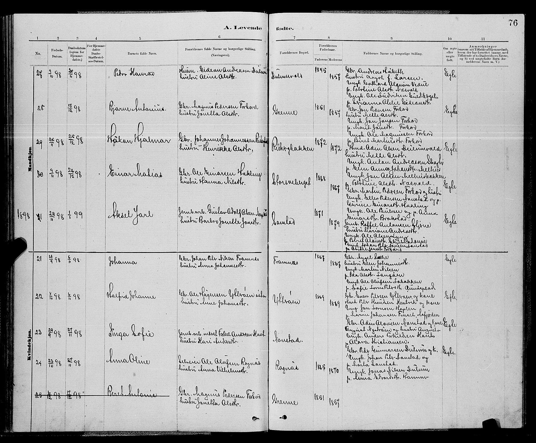 SAT, Ministerialprotokoller, klokkerbøker og fødselsregistre - Nord-Trøndelag, 714/L0134: Klokkerbok nr. 714C03, 1878-1898, s. 76