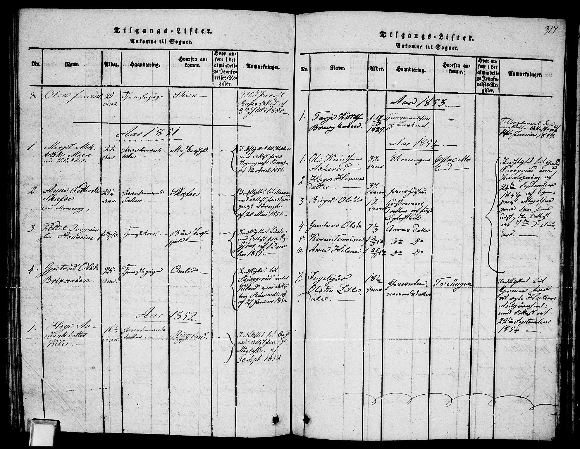 SAKO, Fyresdal kirkebøker, G/Ga/L0002: Klokkerbok nr. I 2, 1815-1857, s. 317