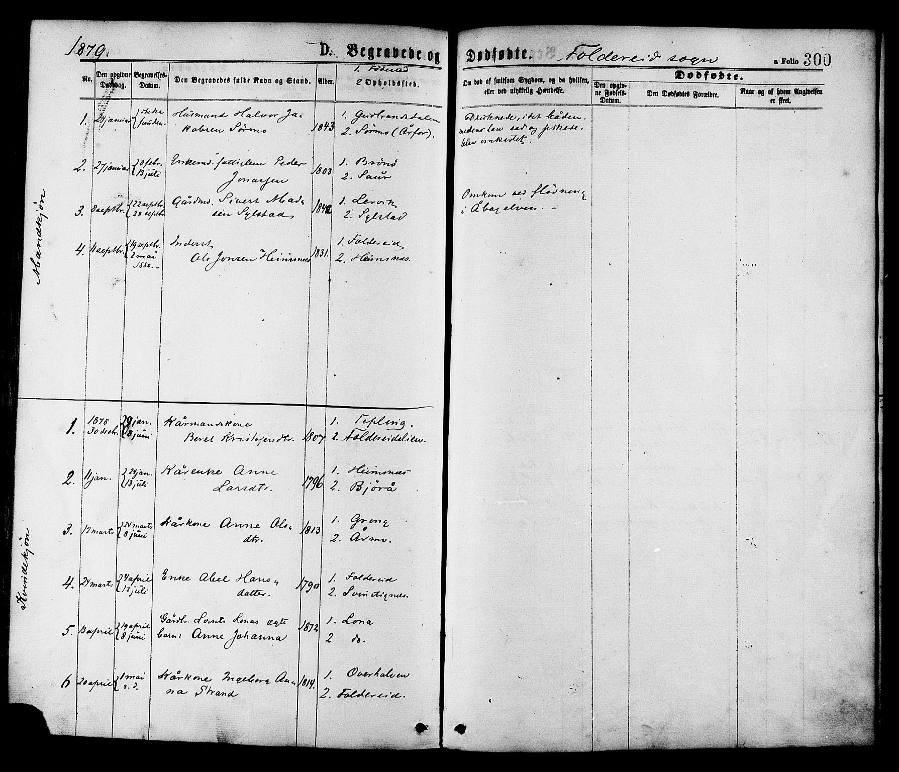 SAT, Ministerialprotokoller, klokkerbøker og fødselsregistre - Nord-Trøndelag, 780/L0642: Ministerialbok nr. 780A07 /2, 1878-1885, s. 300