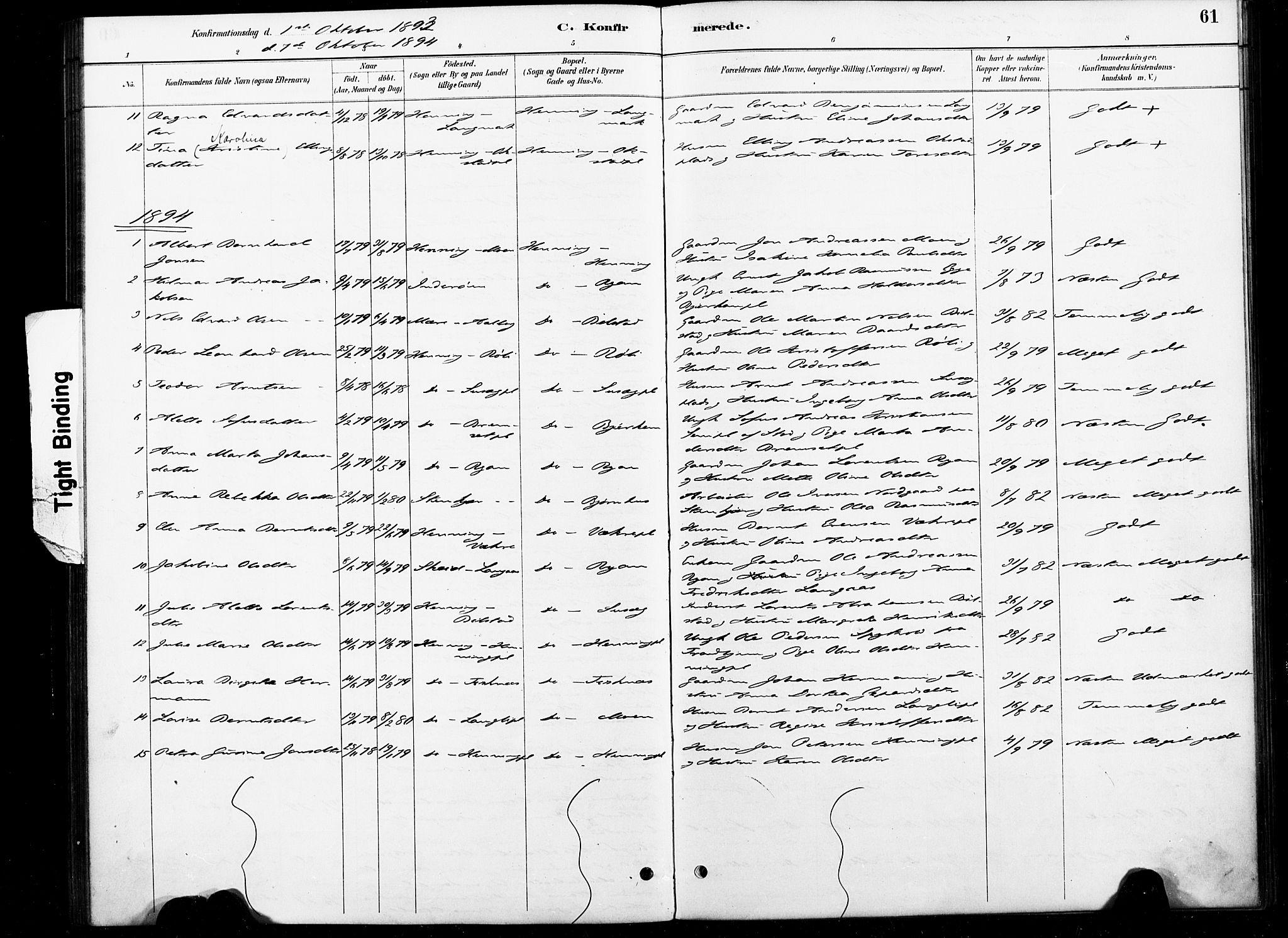 SAT, Ministerialprotokoller, klokkerbøker og fødselsregistre - Nord-Trøndelag, 738/L0364: Ministerialbok nr. 738A01, 1884-1902, s. 61