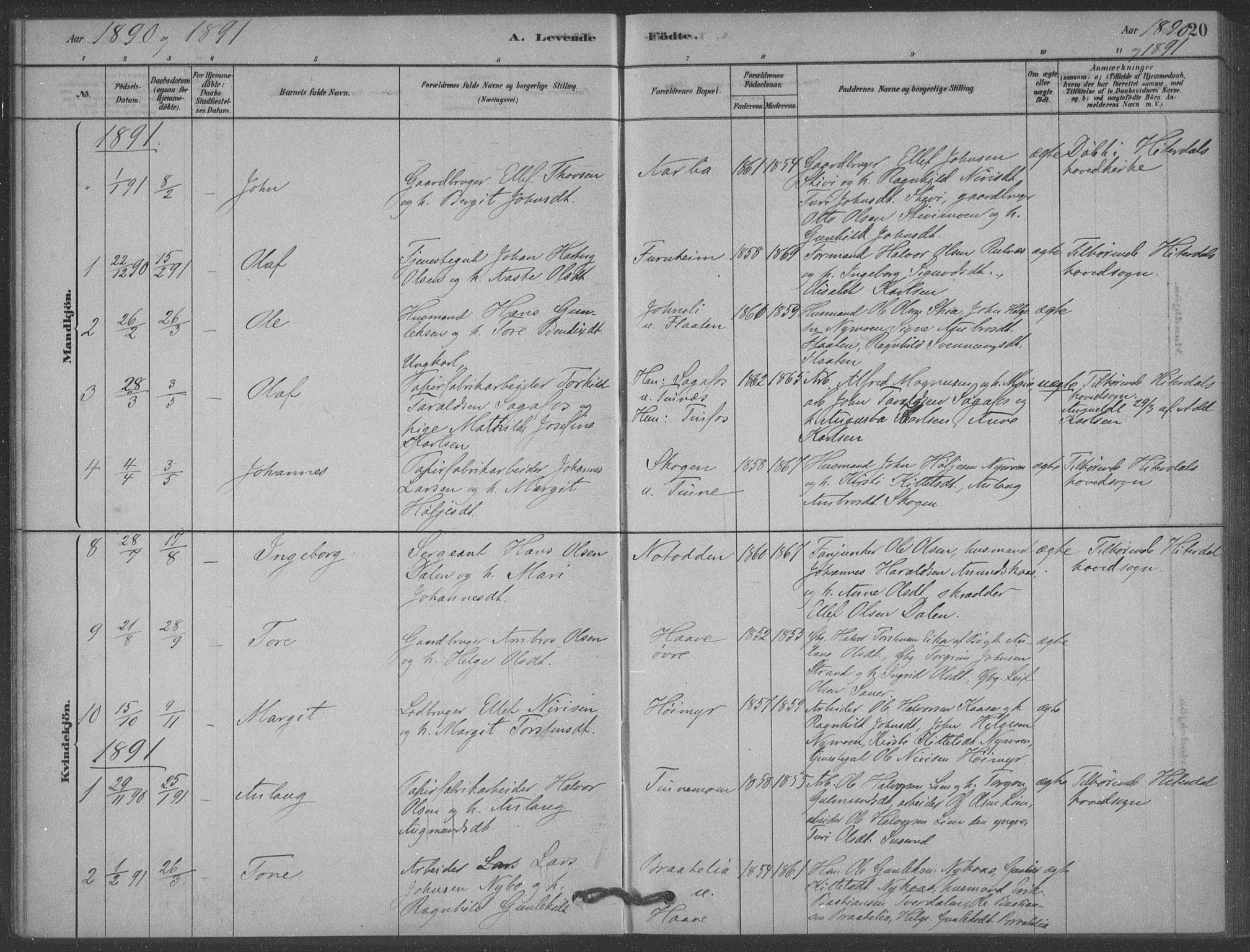 SAKO, Heddal kirkebøker, F/Fb/L0002: Ministerialbok nr. II 2, 1878-1913, s. 20