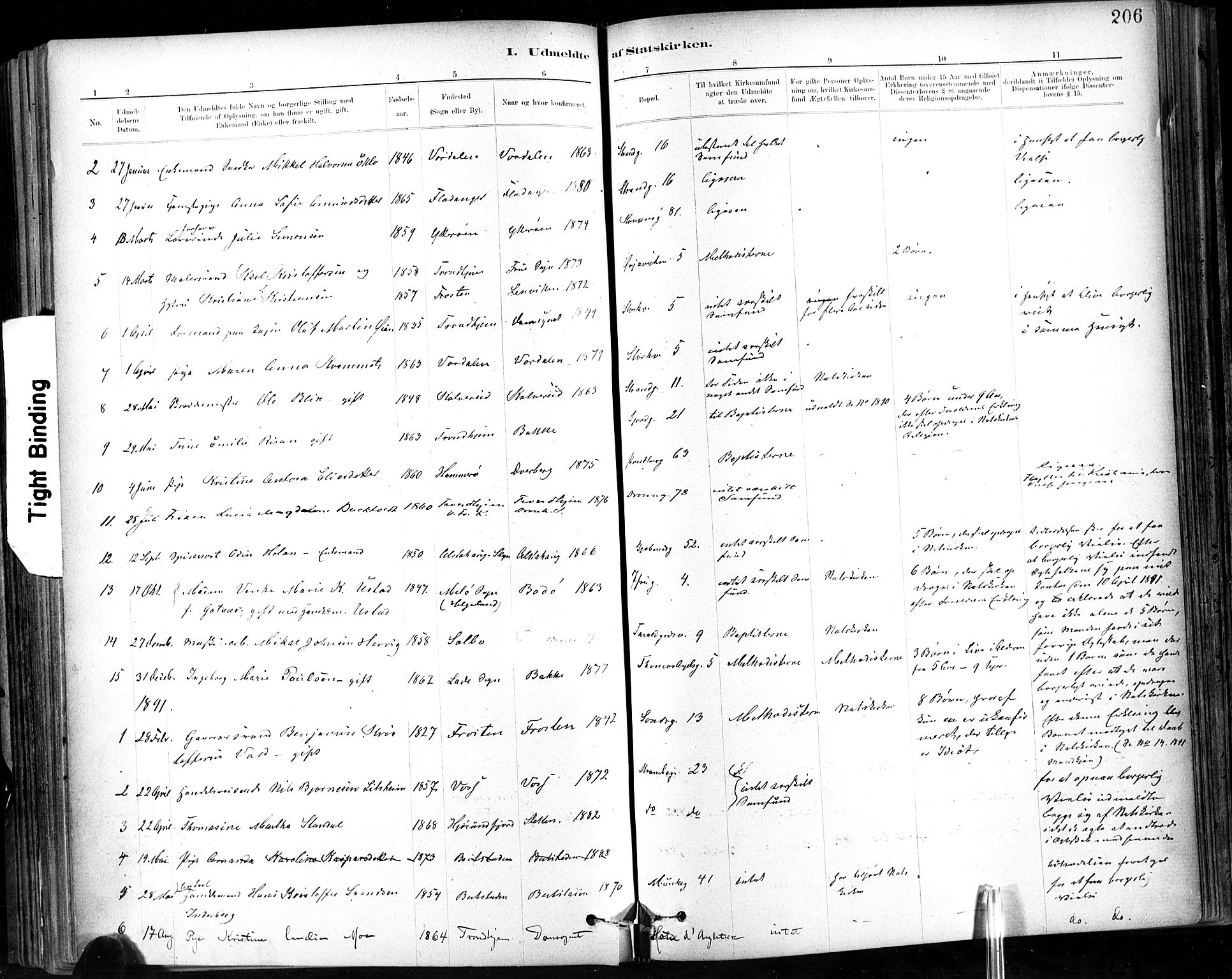 SAT, Ministerialprotokoller, klokkerbøker og fødselsregistre - Sør-Trøndelag, 602/L0120: Ministerialbok nr. 602A18, 1880-1913, s. 206