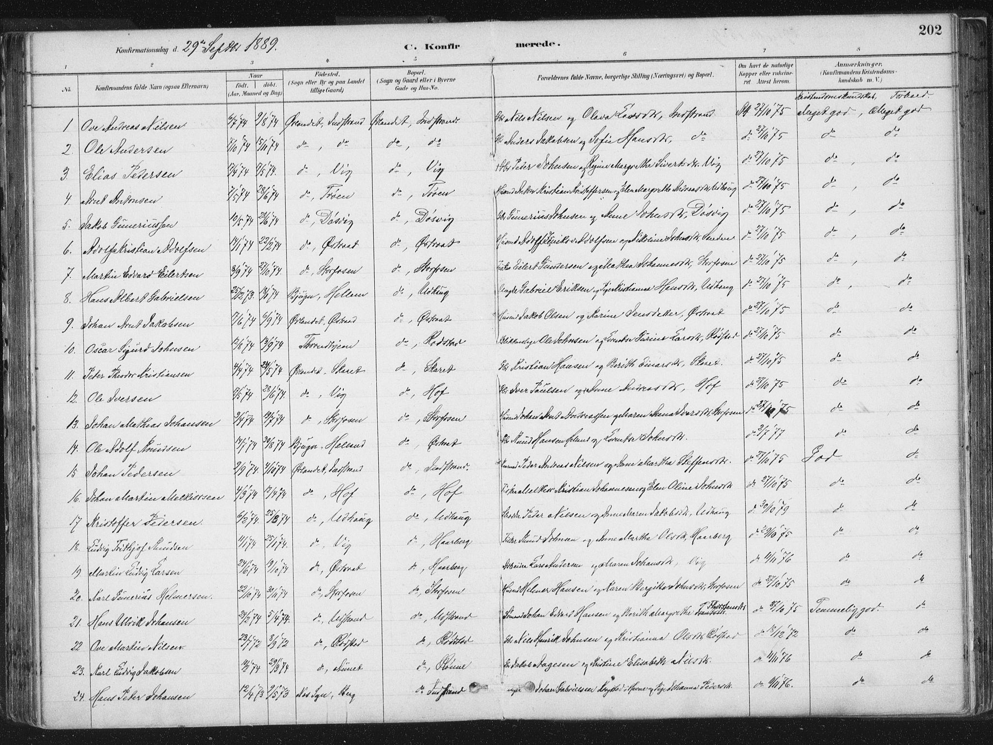 SAT, Ministerialprotokoller, klokkerbøker og fødselsregistre - Sør-Trøndelag, 659/L0739: Ministerialbok nr. 659A09, 1879-1893, s. 202