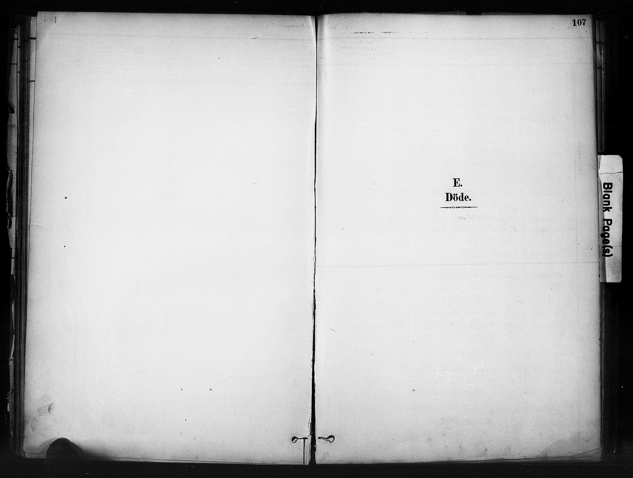 SAH, Nord-Aurdal prestekontor, Ministerialbok nr. 13, 1883-1895, s. 107