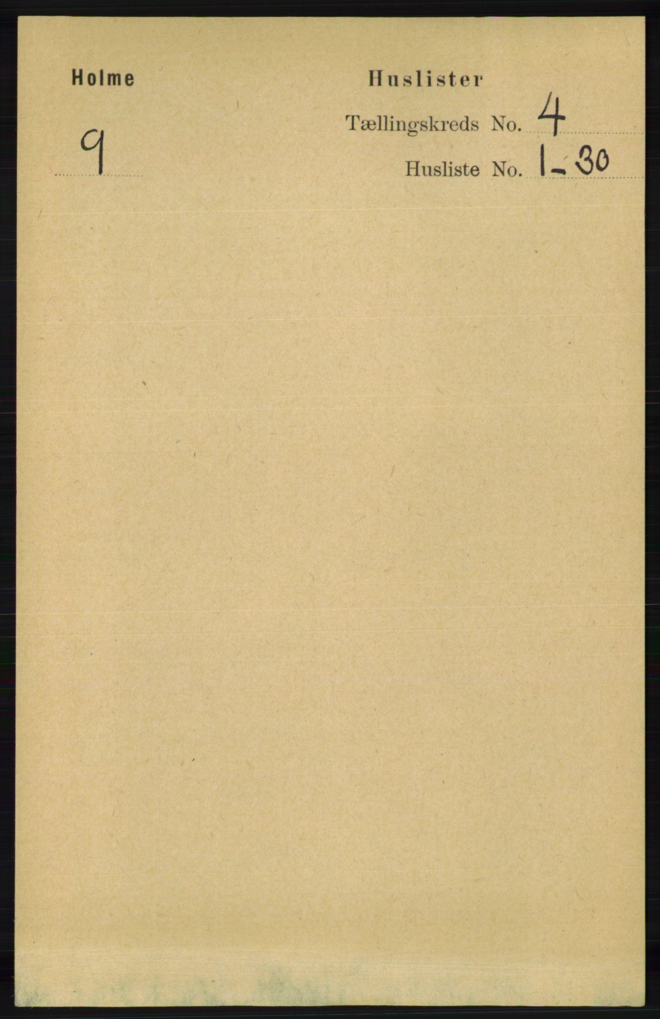 RA, Folketelling 1891 for 1020 Holum herred, 1891, s. 1000