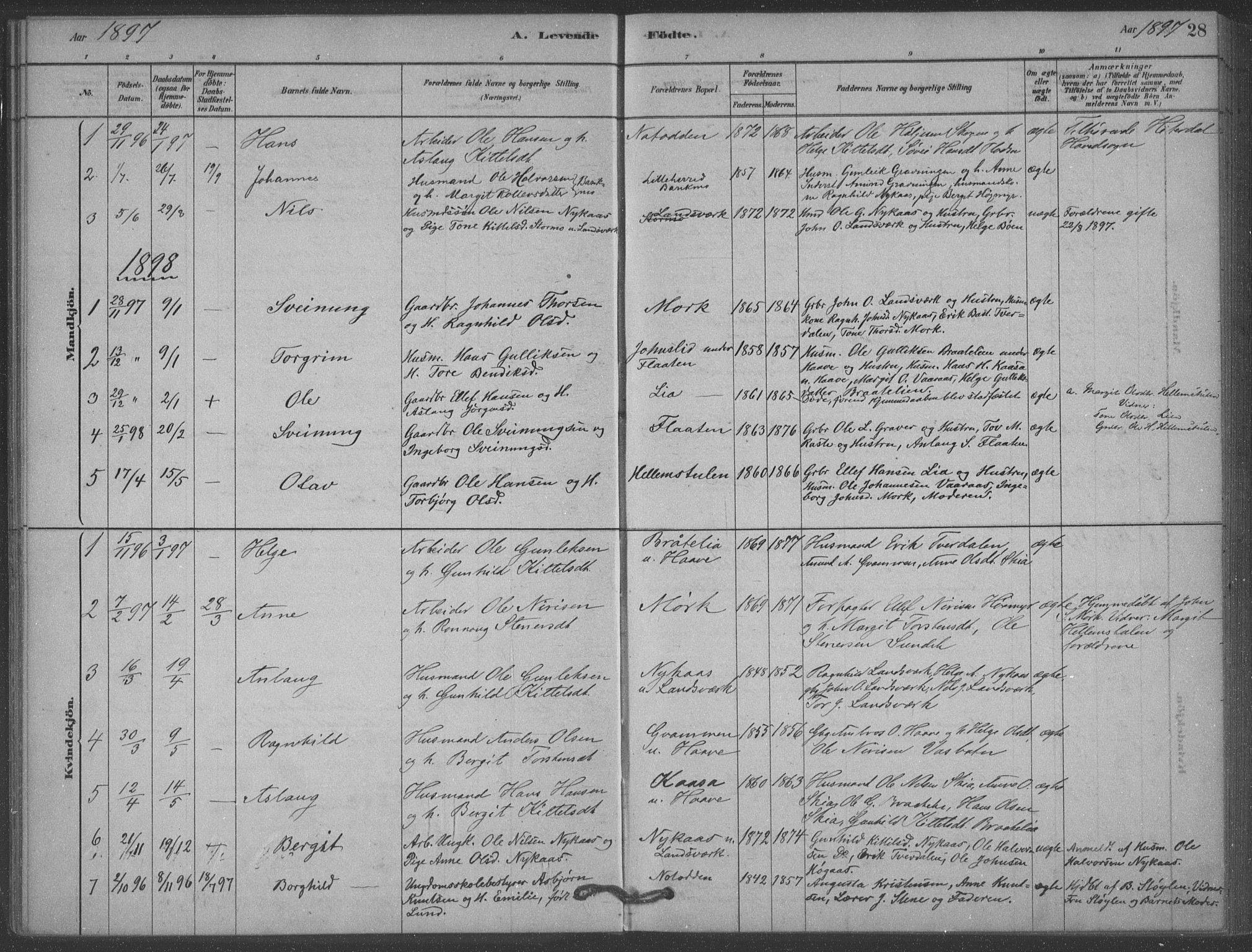 SAKO, Heddal kirkebøker, F/Fb/L0002: Ministerialbok nr. II 2, 1878-1913, s. 28