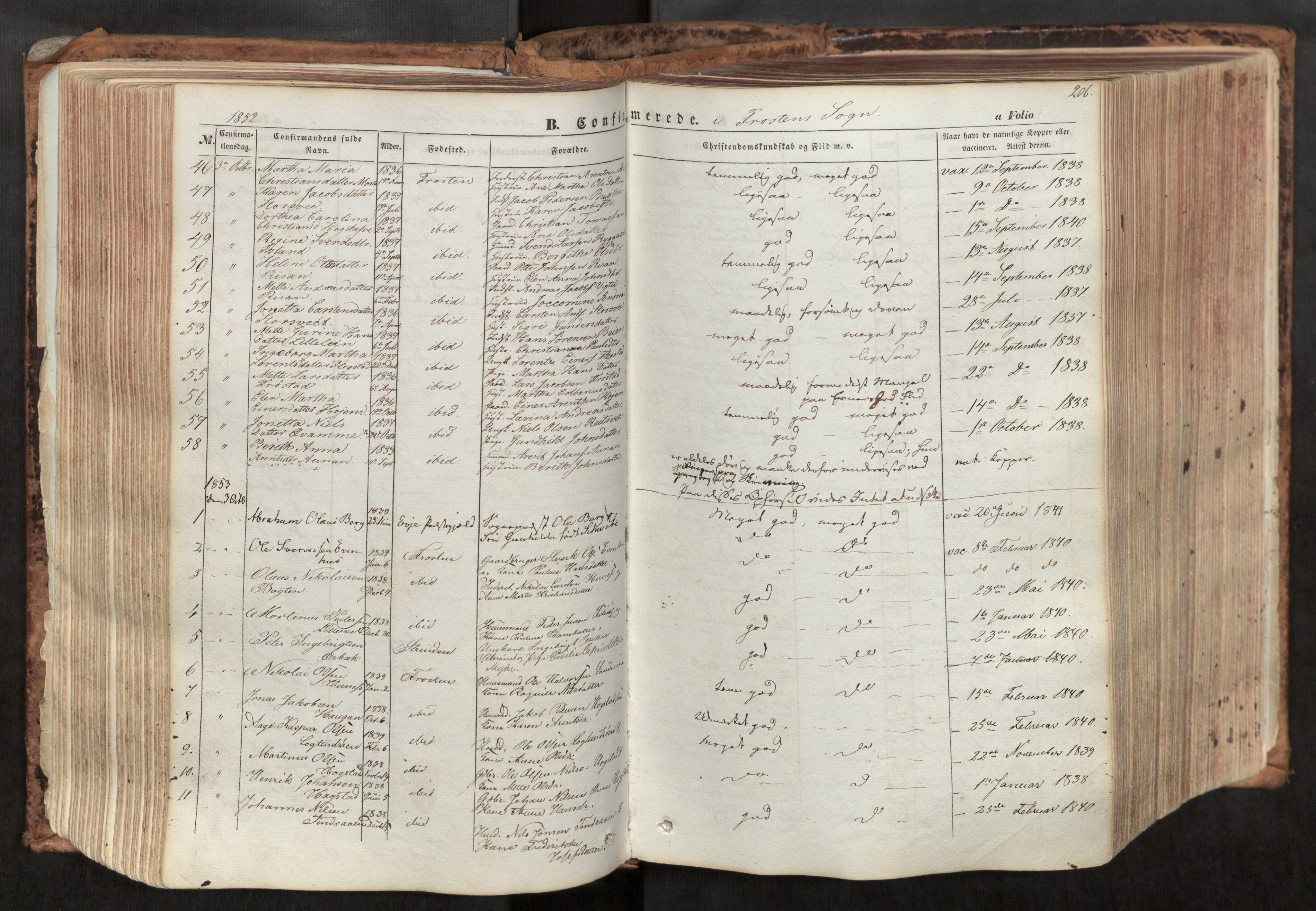 SAT, Ministerialprotokoller, klokkerbøker og fødselsregistre - Nord-Trøndelag, 713/L0116: Ministerialbok nr. 713A07, 1850-1877, s. 206