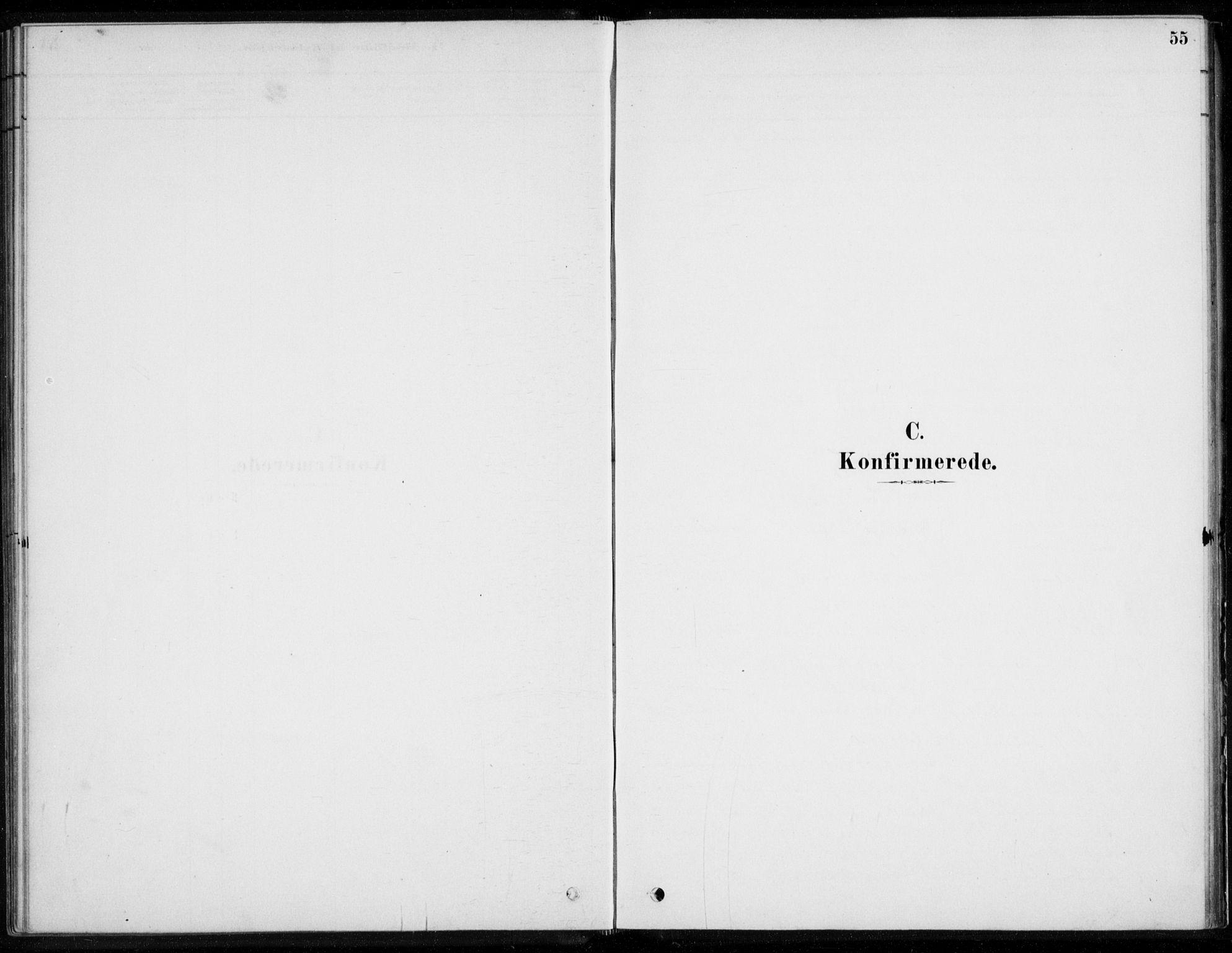 SAKO, Åssiden kirkebøker, F/Fa/L0001: Ministerialbok nr. 1, 1878-1904, s. 55